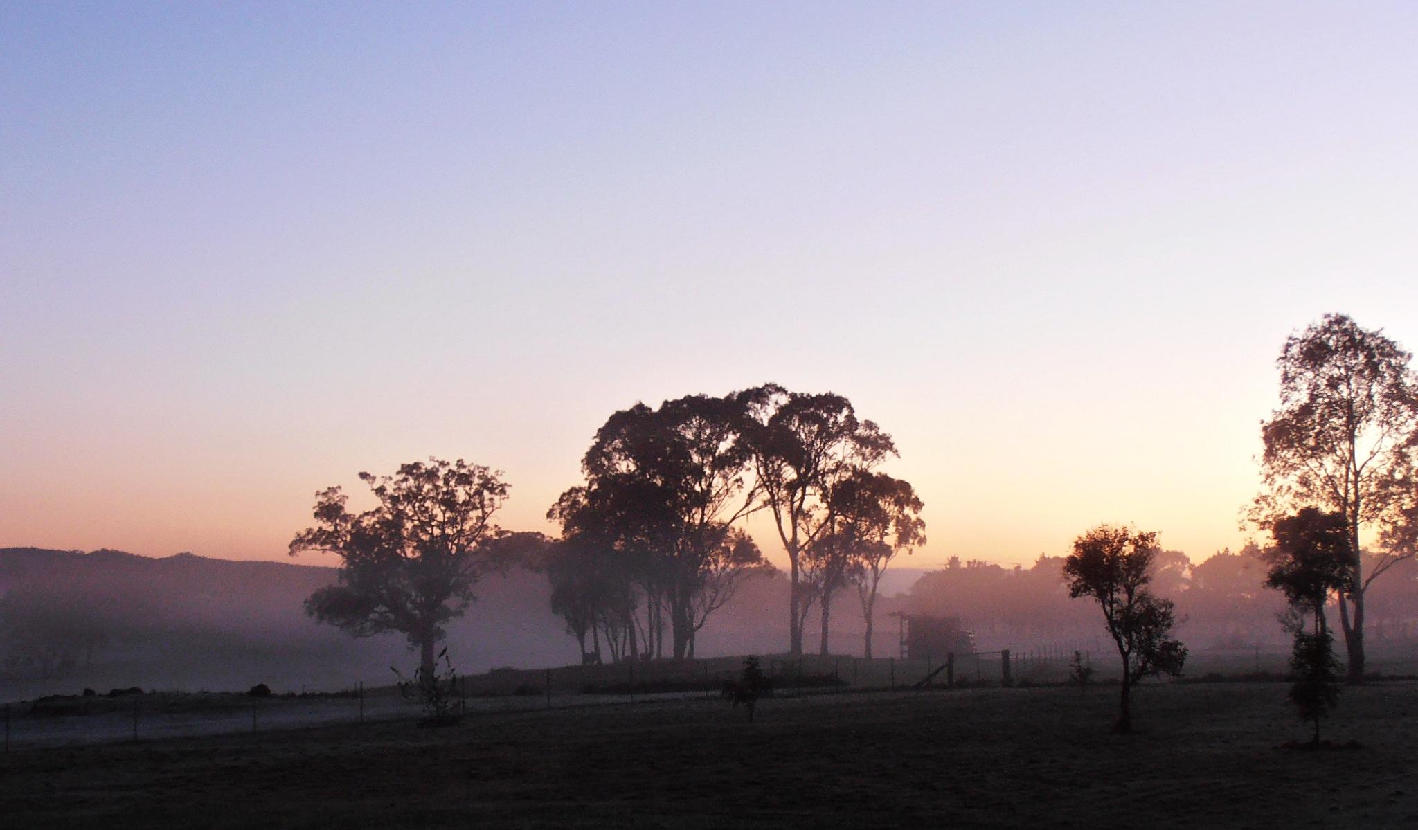 GOOD MORNING, WORLD! by  Dianne J. Larsen