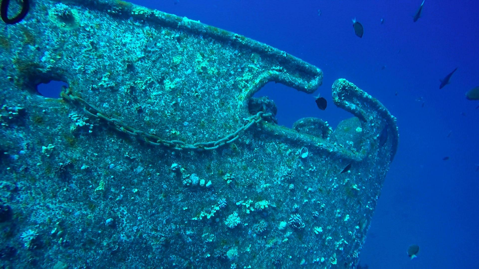 Shipwreck (cedarpride) Reef by Hassan Alkadi