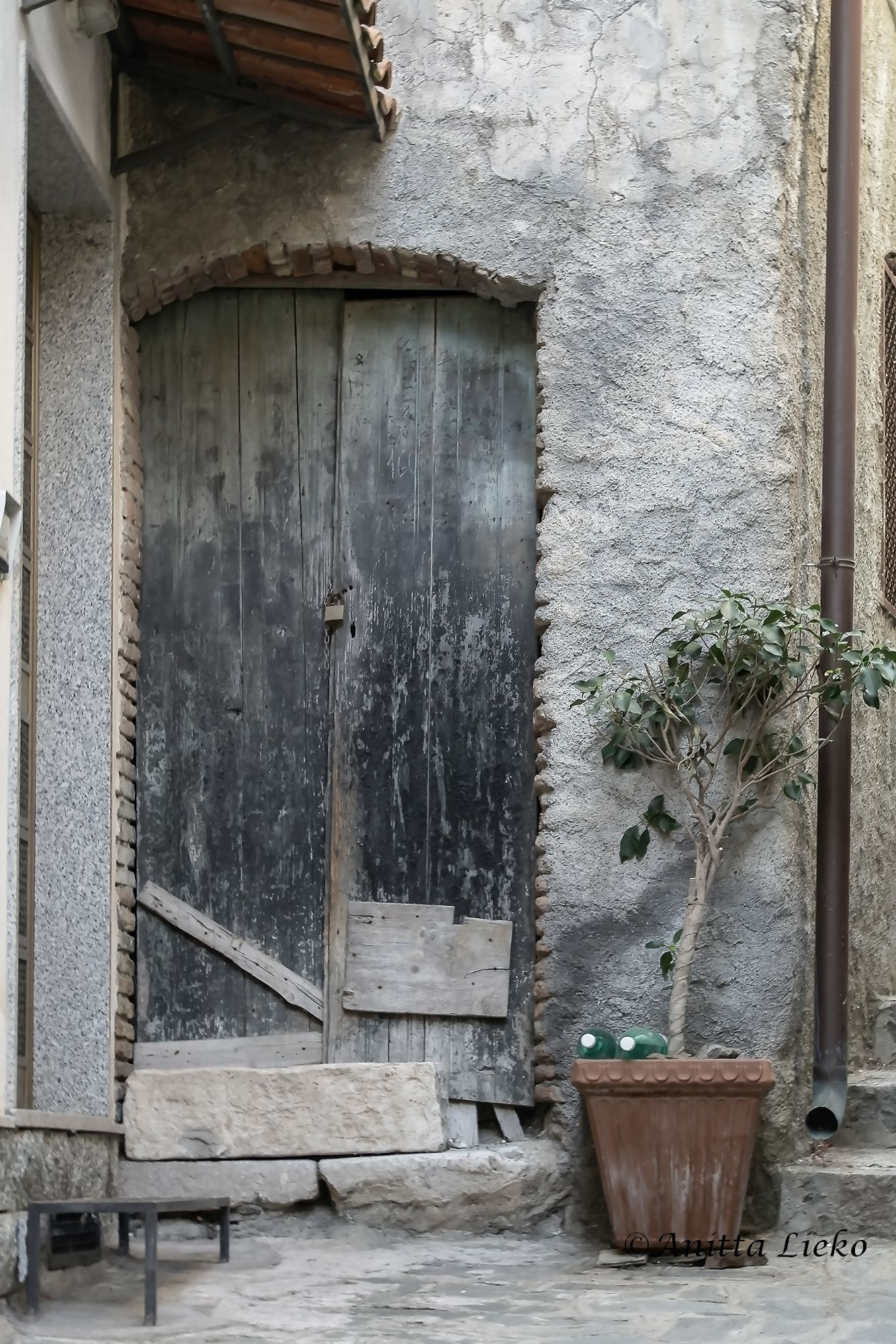 The door to the past by Anitta Lieko