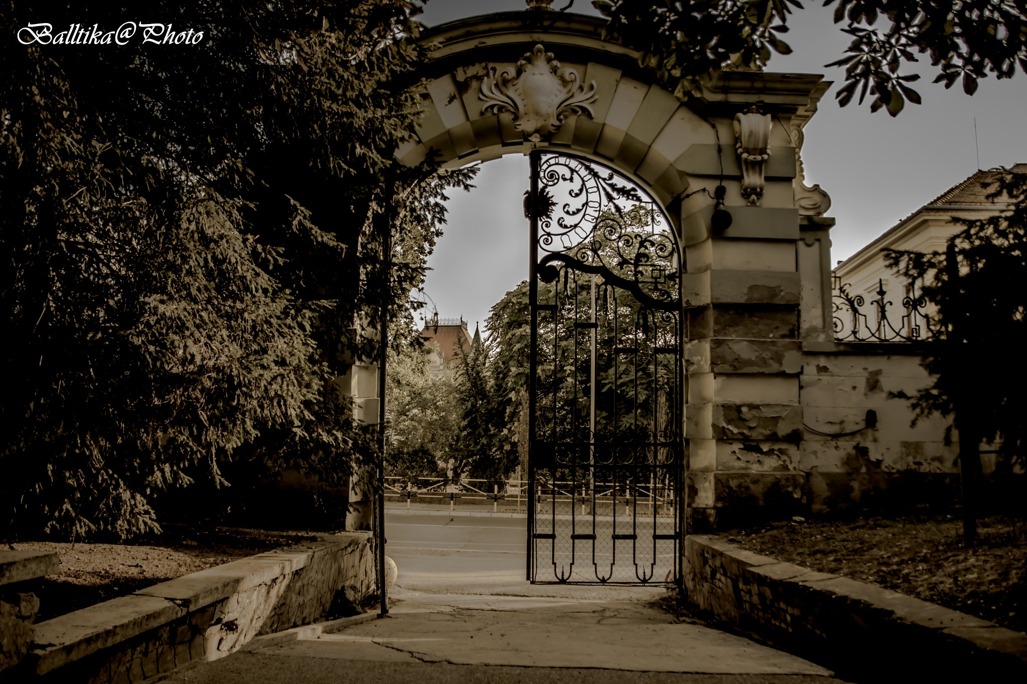 the gate by Sandrin