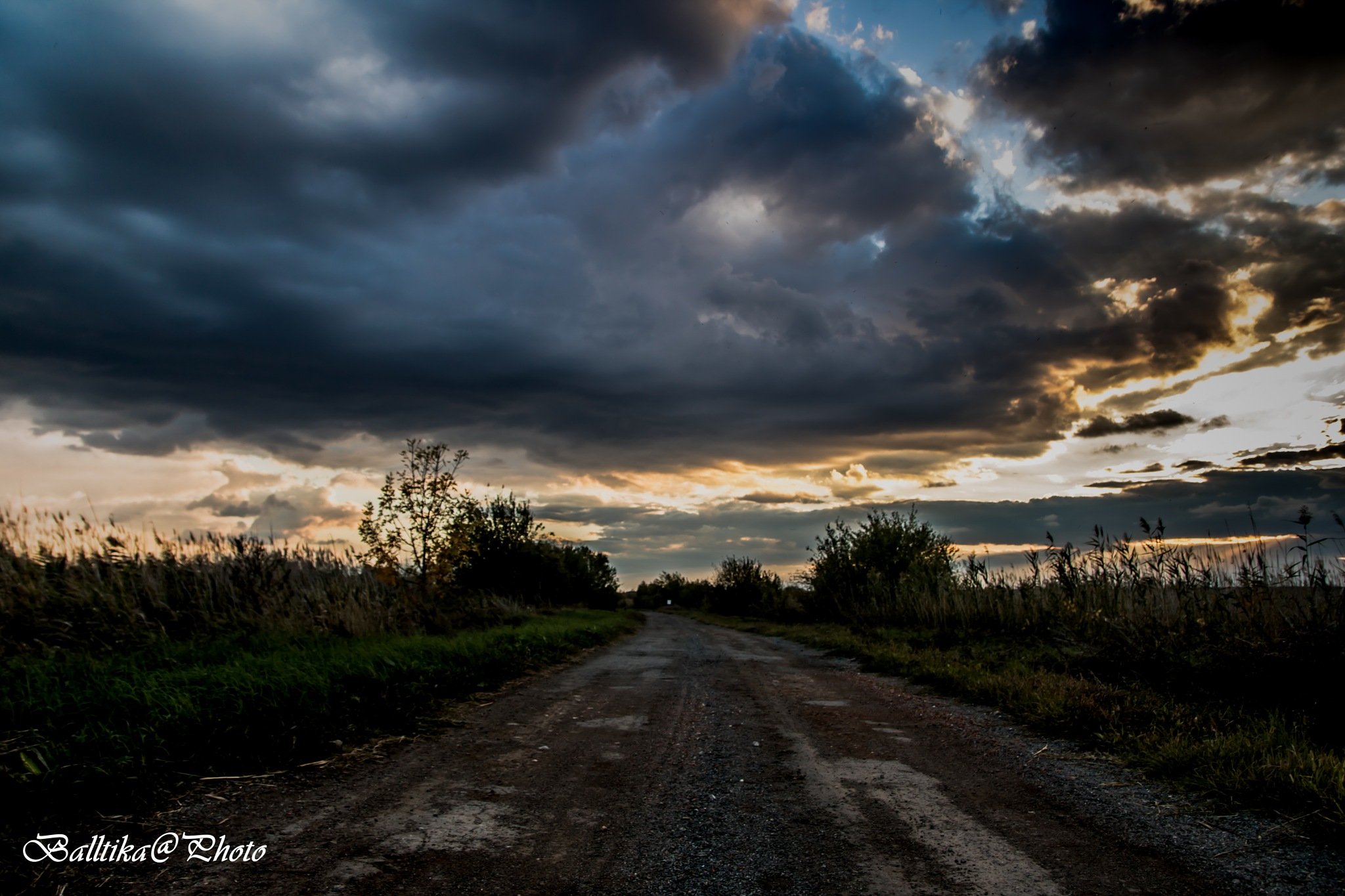 path in unknown direction by Sandrin