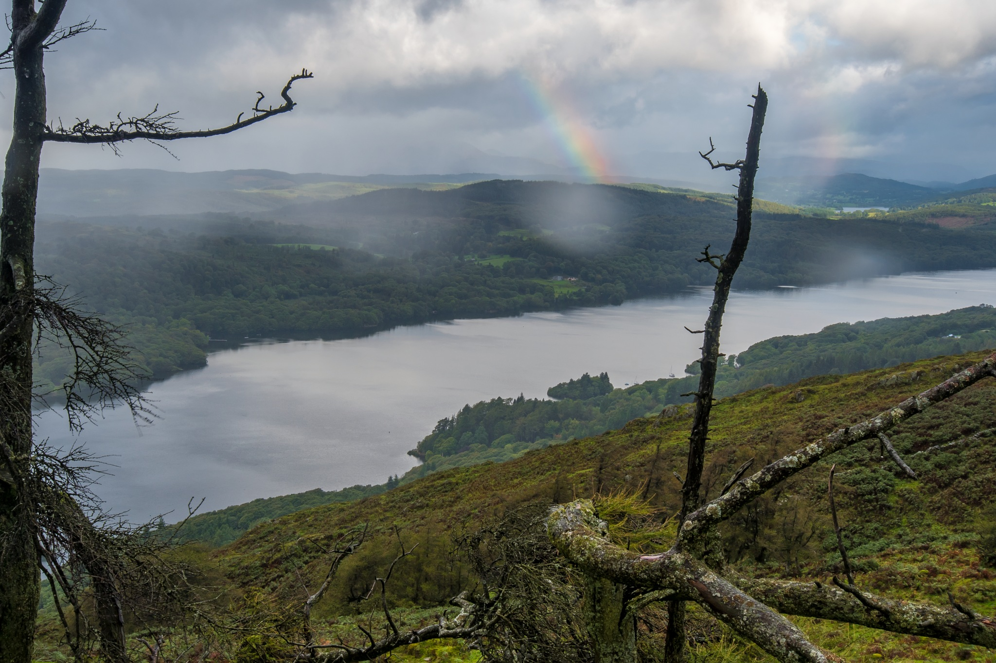 Squwals, sun and rainbows all in one! by Stephen Hammond