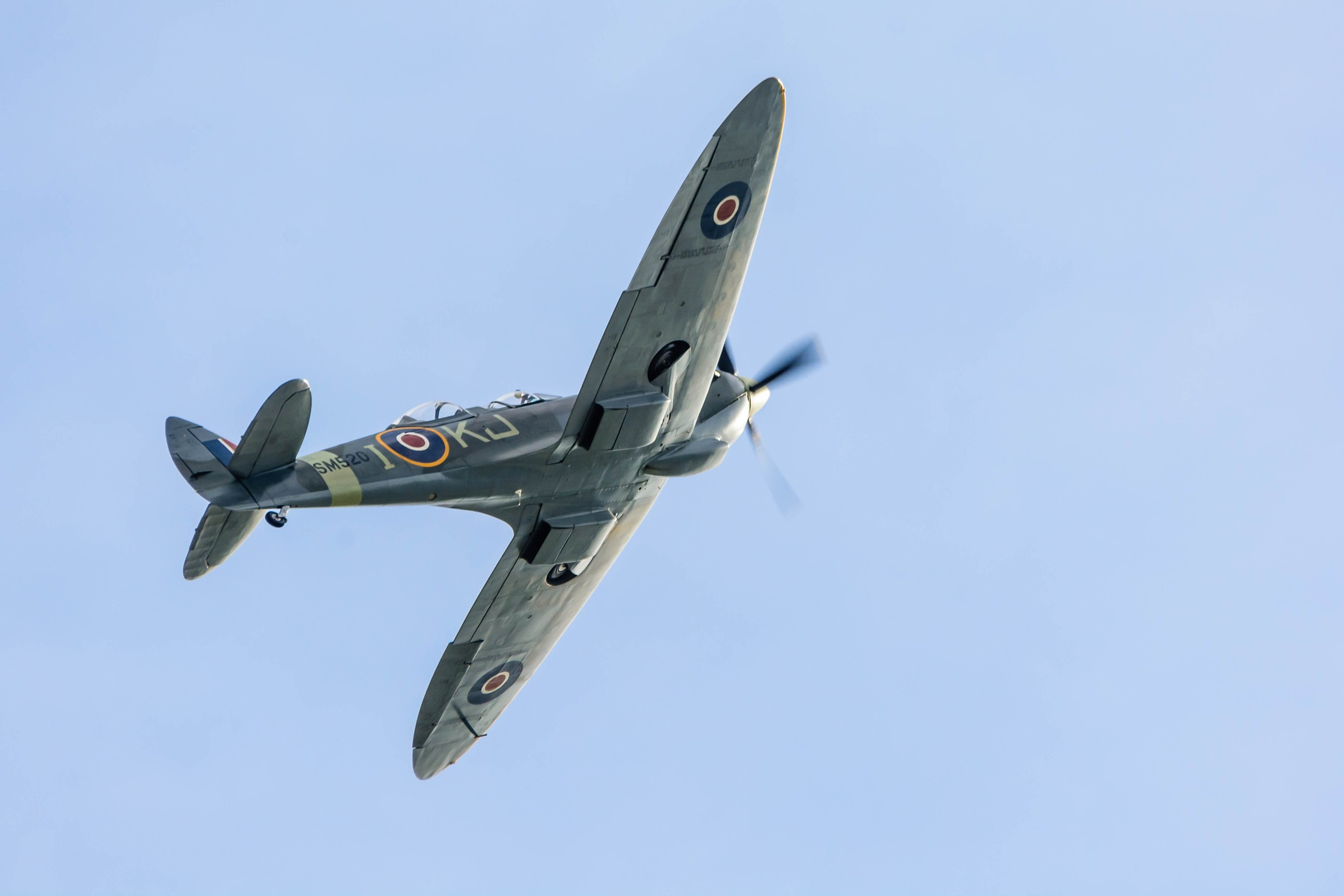 Spitfire by Stephen Hammond