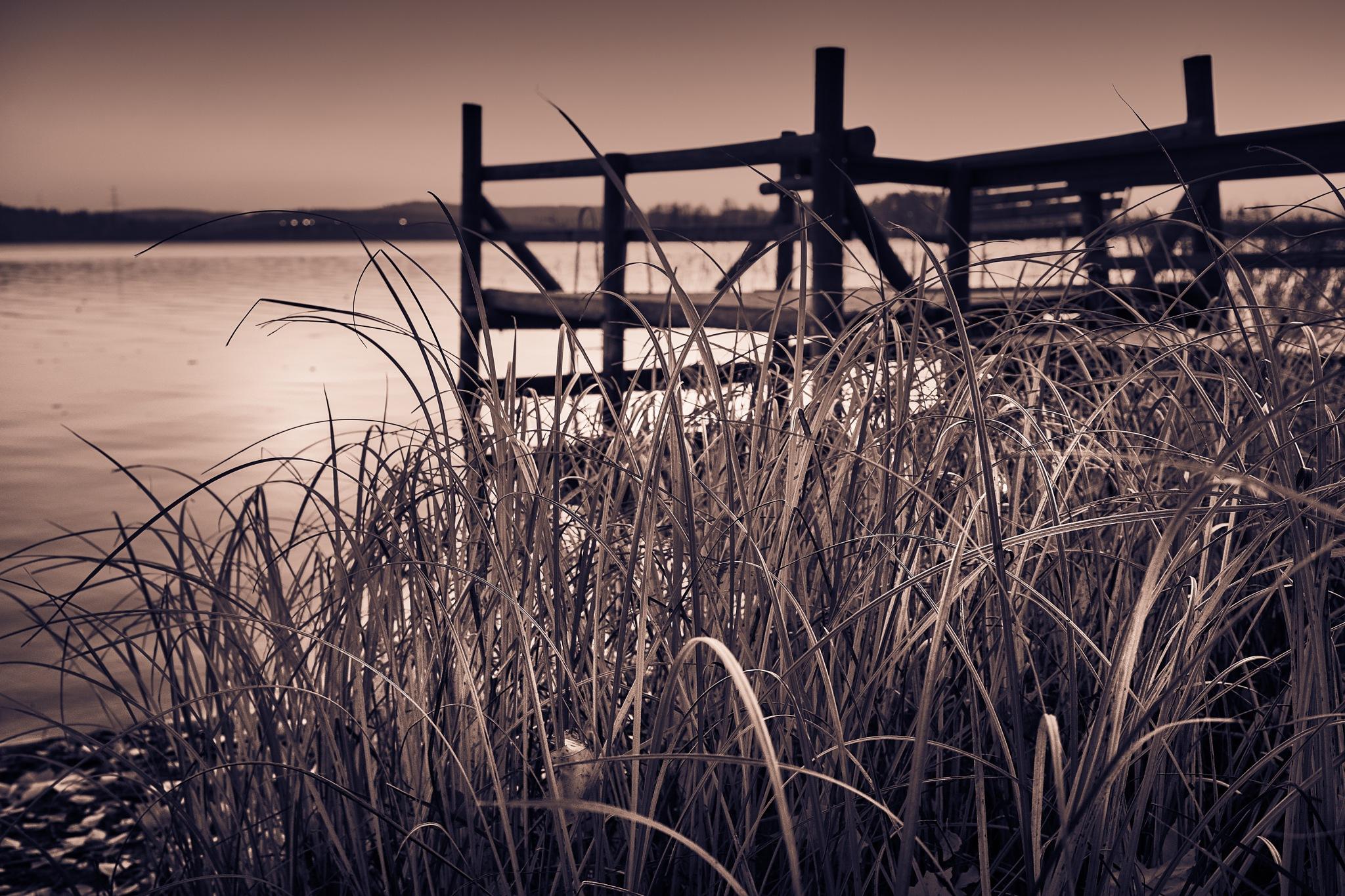 Autumn morning by Juuso Timonen