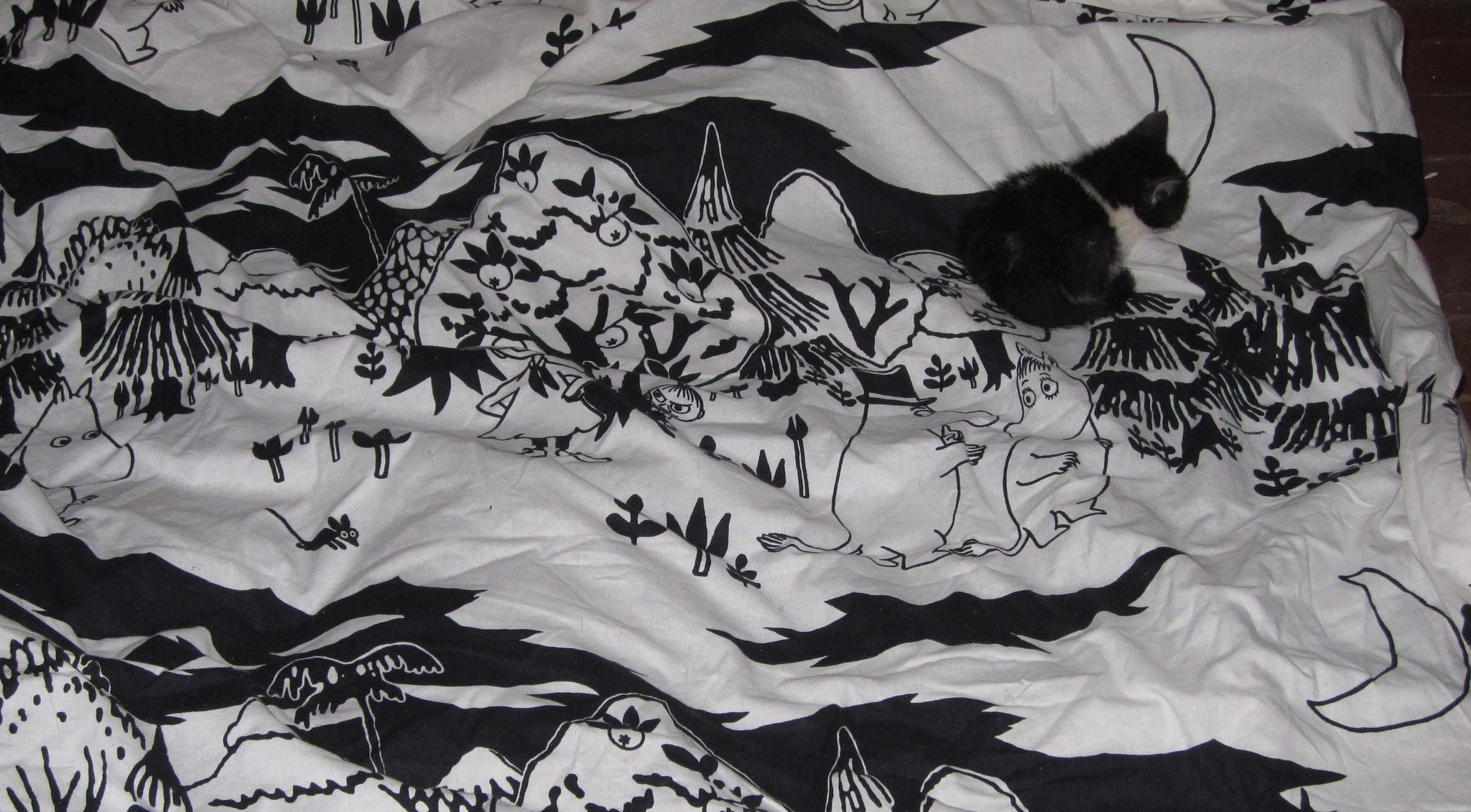 cat-mouflage-3 by anulumesadu