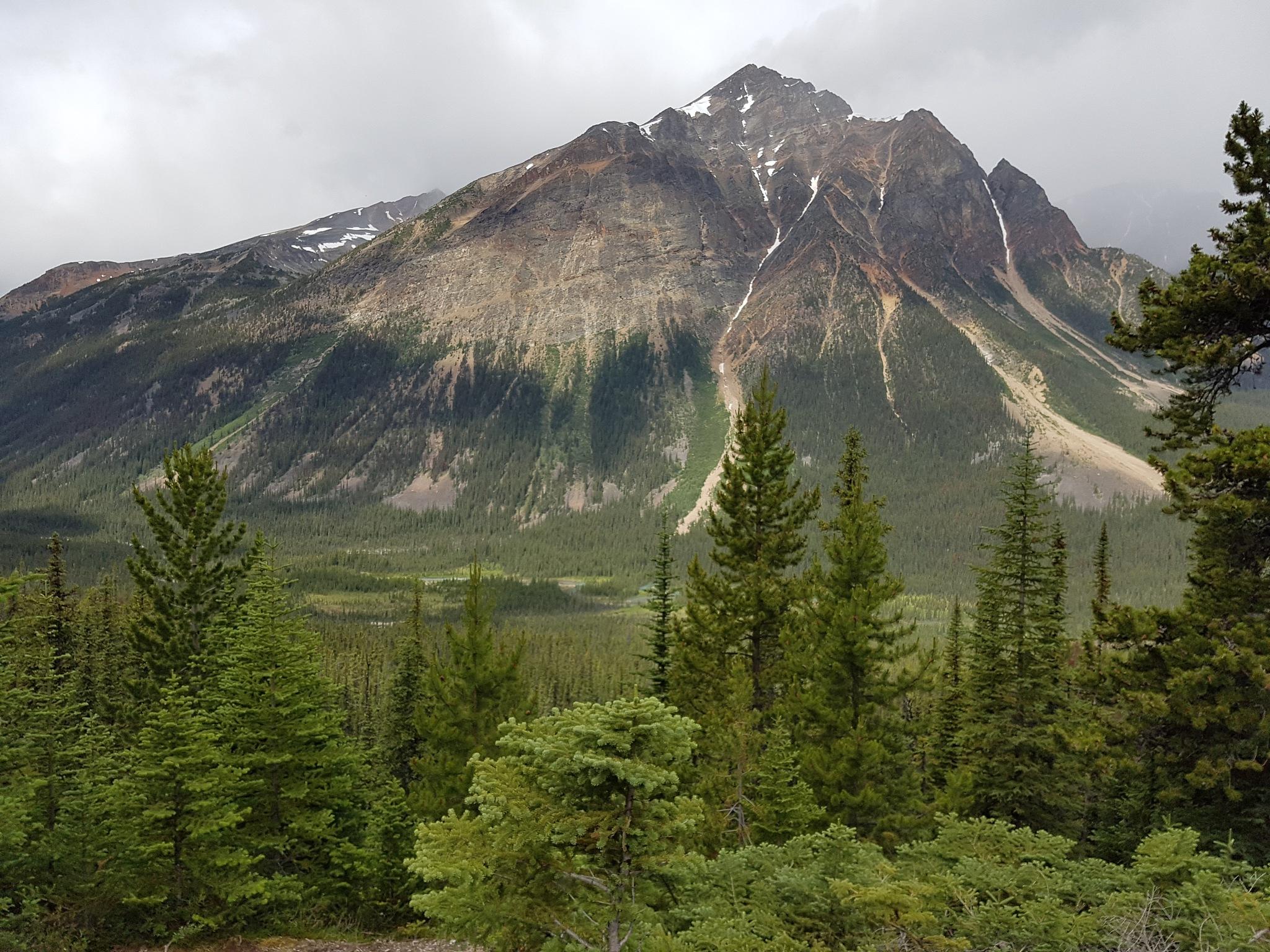 Peak by kelseymacarthur8
