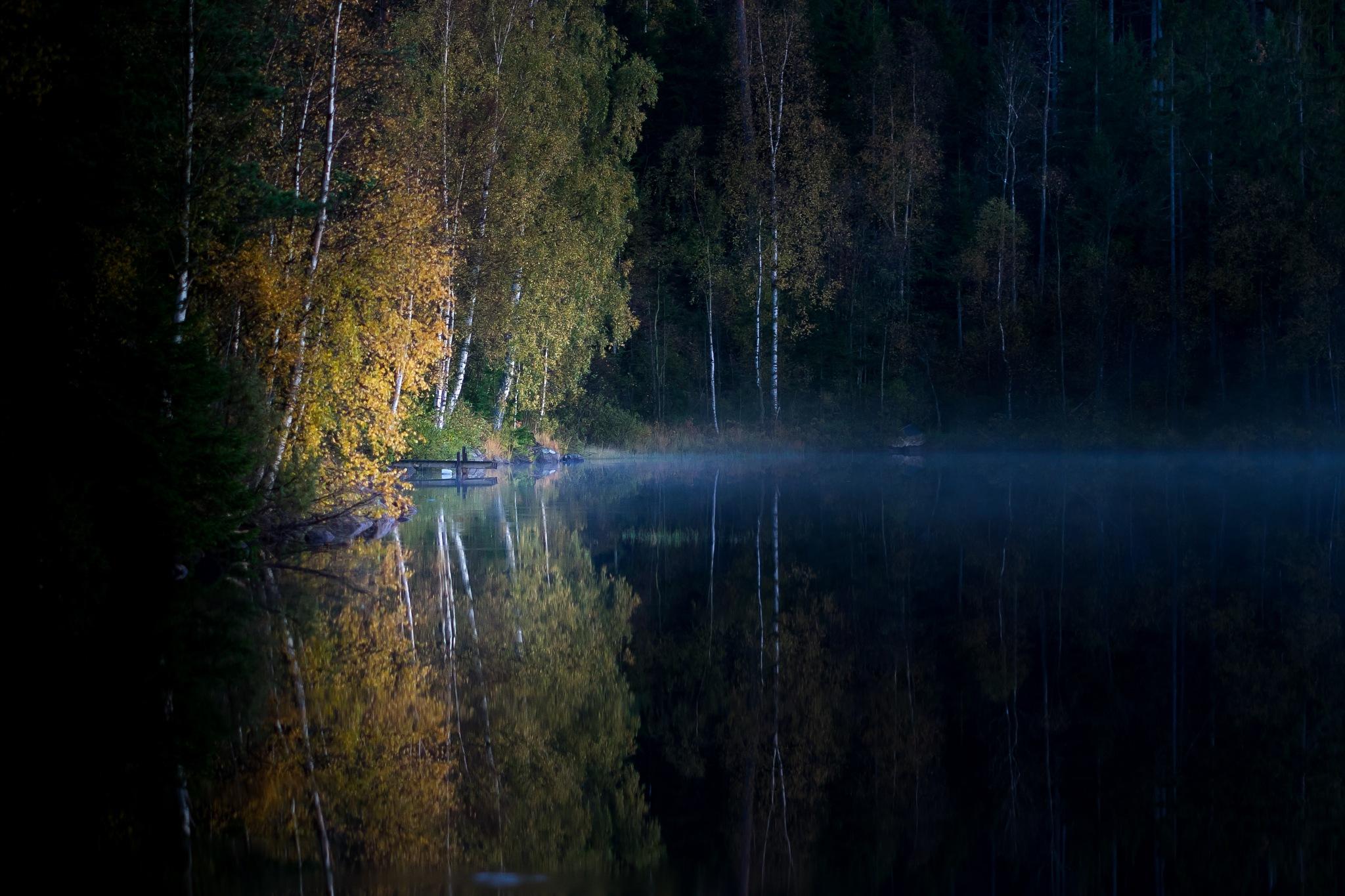 Mystic by Wesley Overklift