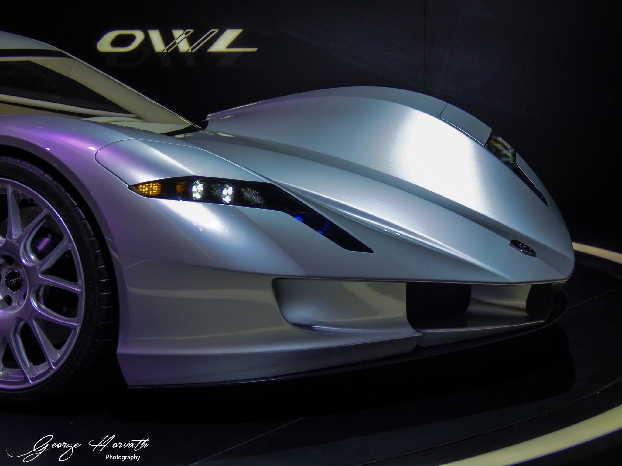 Owl by György Horváth