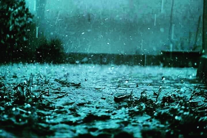Rain  by Afsara Tasnim Tanha