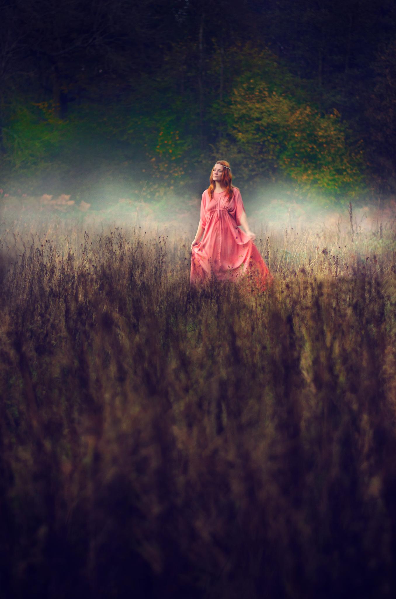 The Wanderer by KellyBird