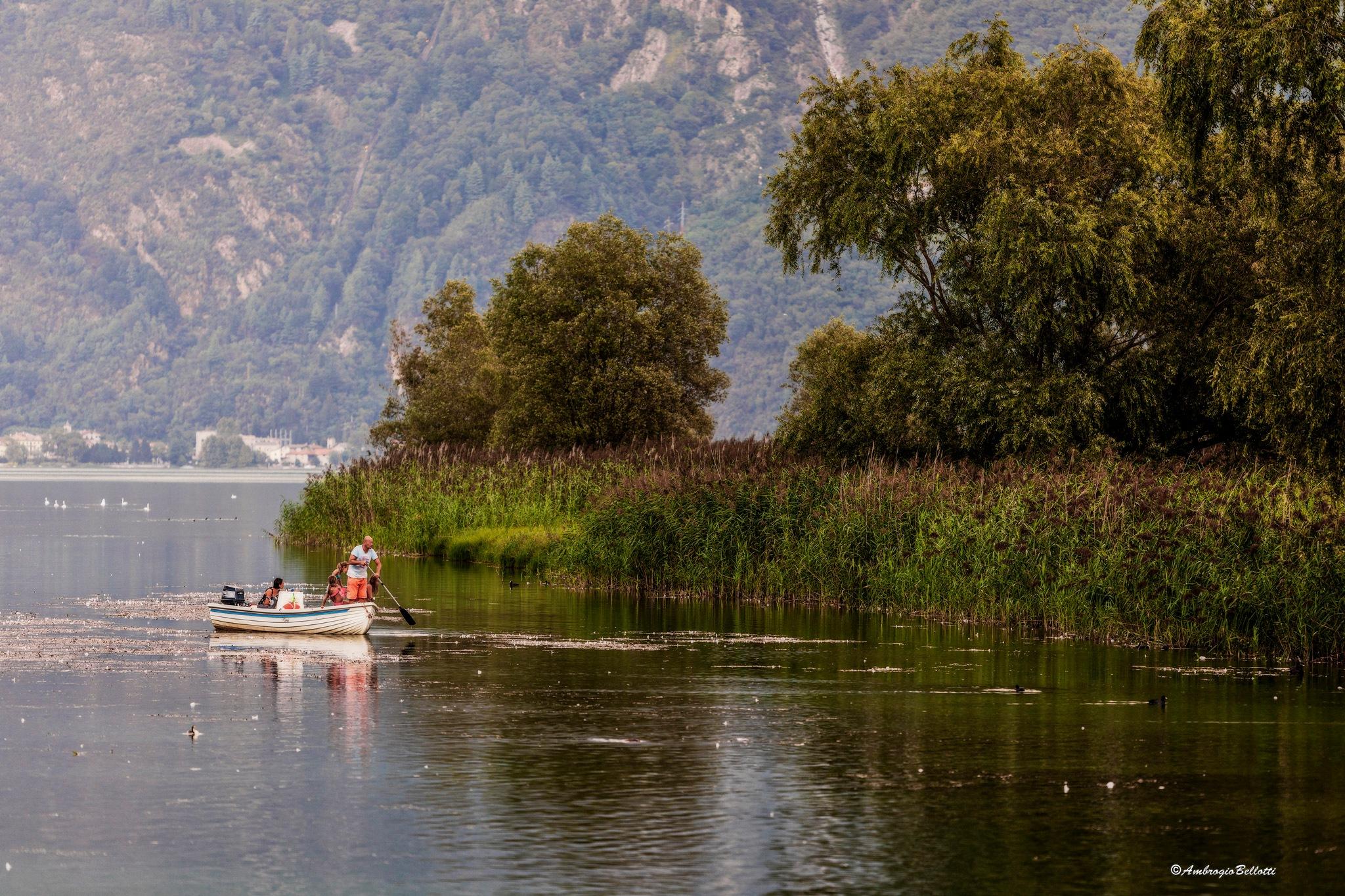 lago di Mezzola. by Ambrogio Bellotti