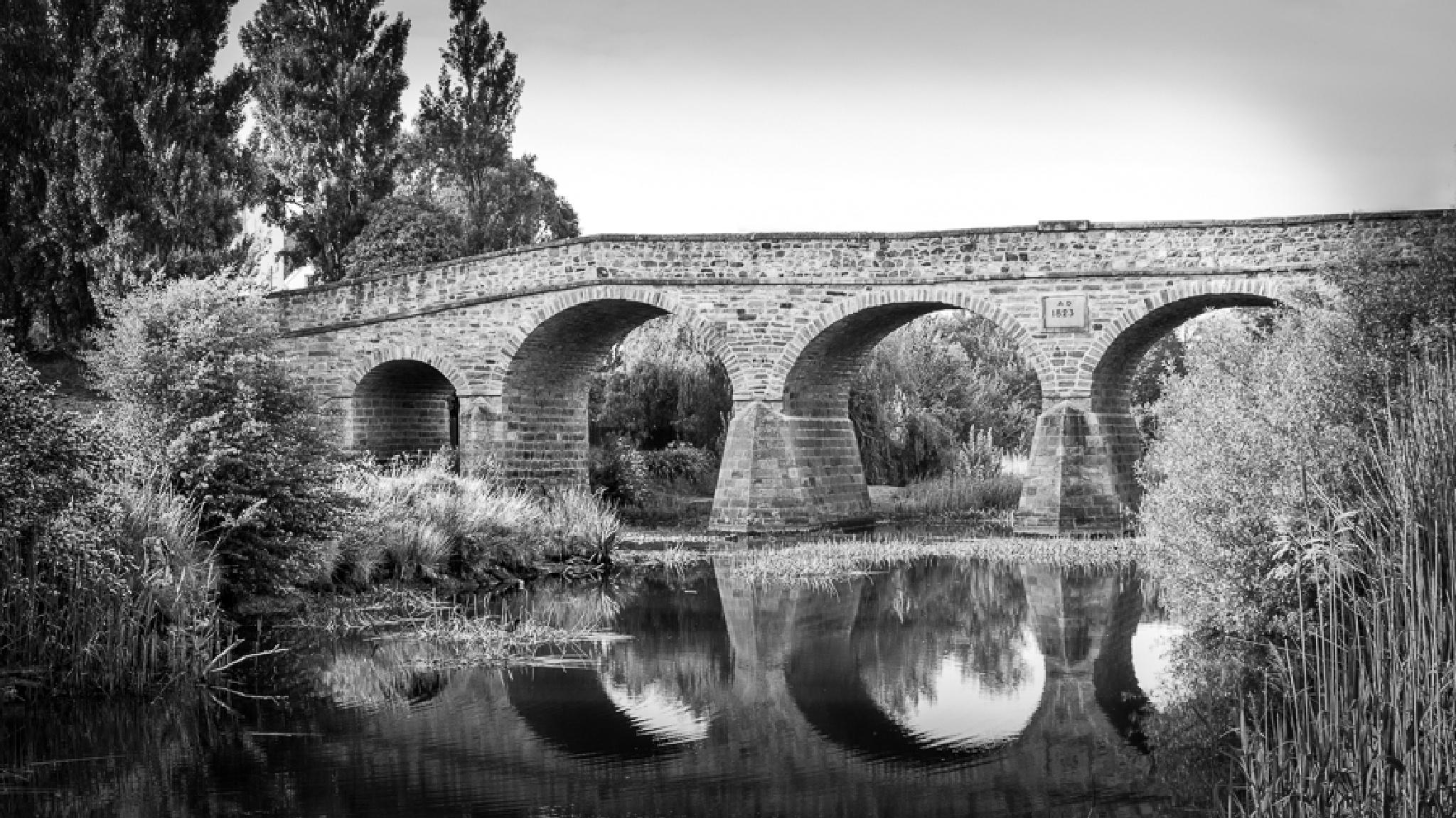 Historic Richmond Bridge by Tony Buckley Photography