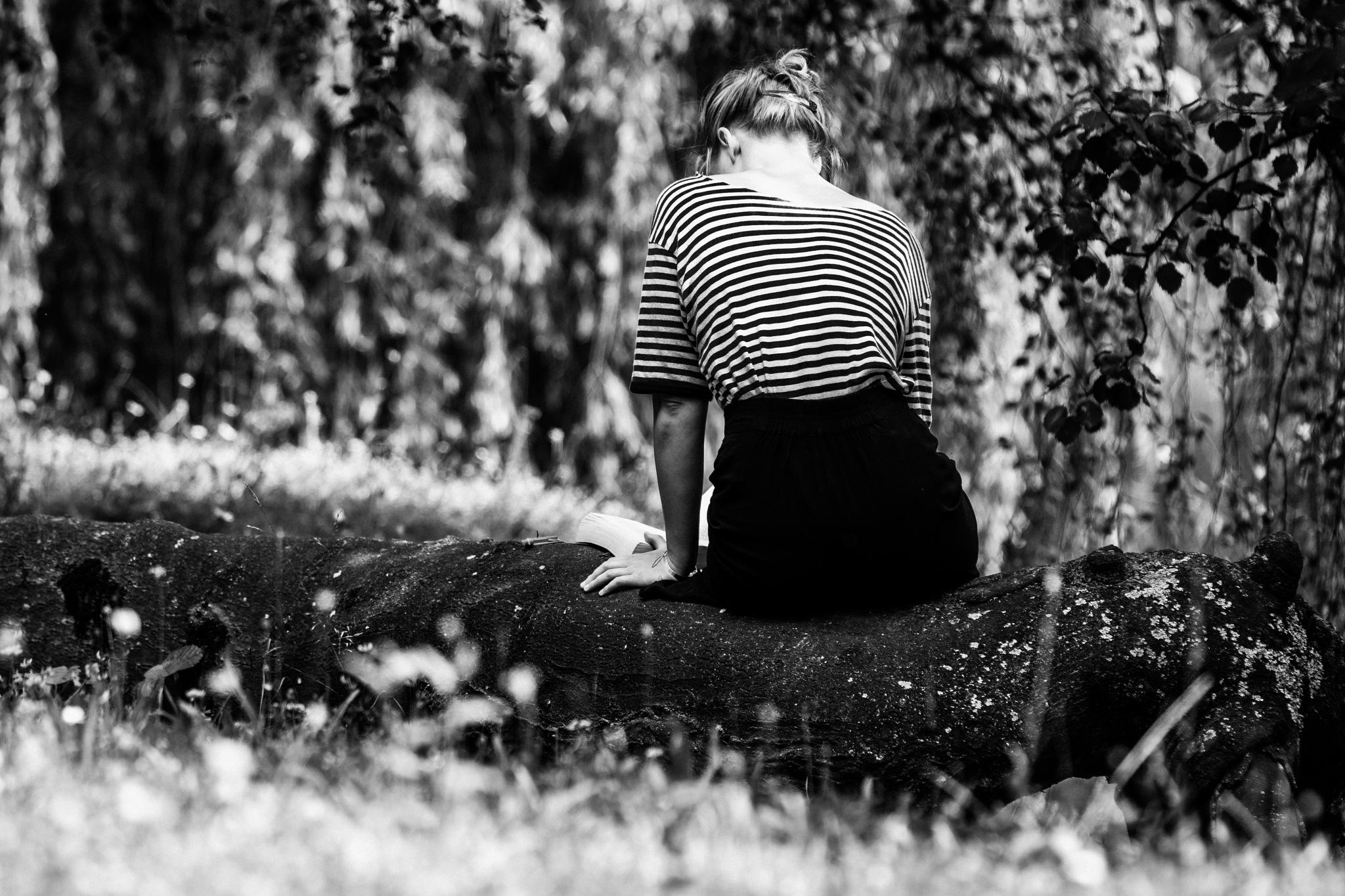 Die Leserin  by Stefan Lauterbach