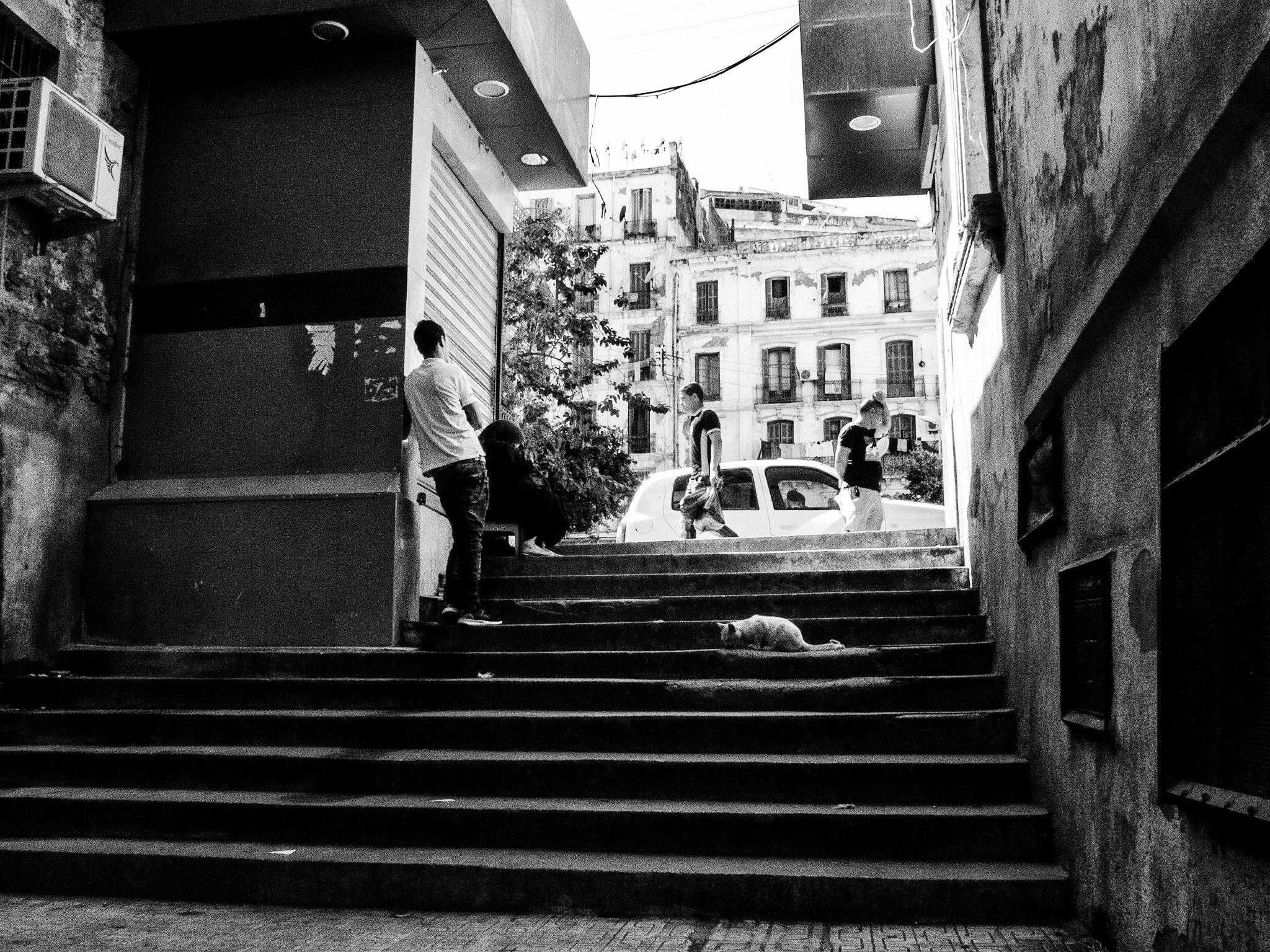 Algiers street by Habit Touche'Art
