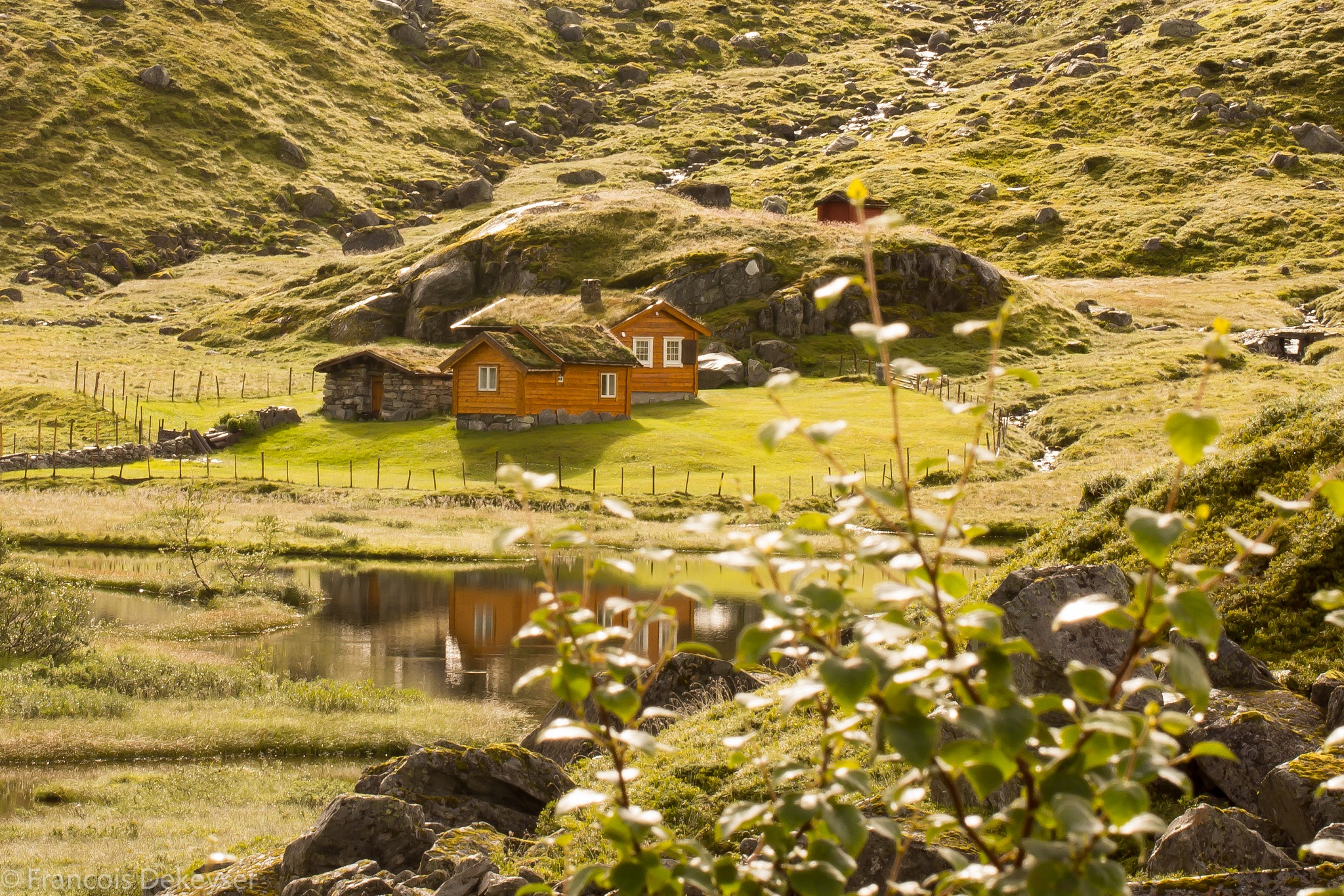 Little Houses by frade