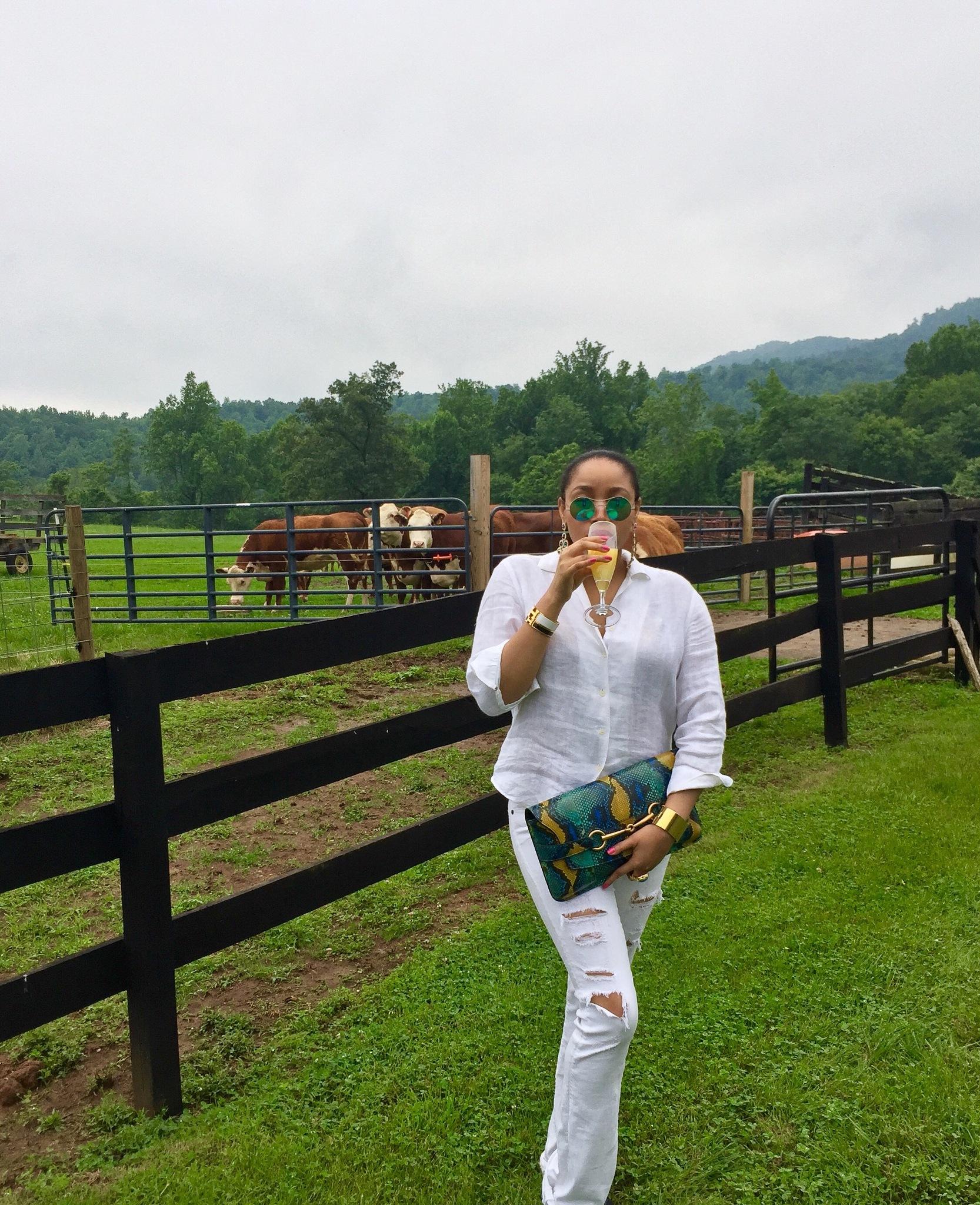 Farm Life  by Abby Love