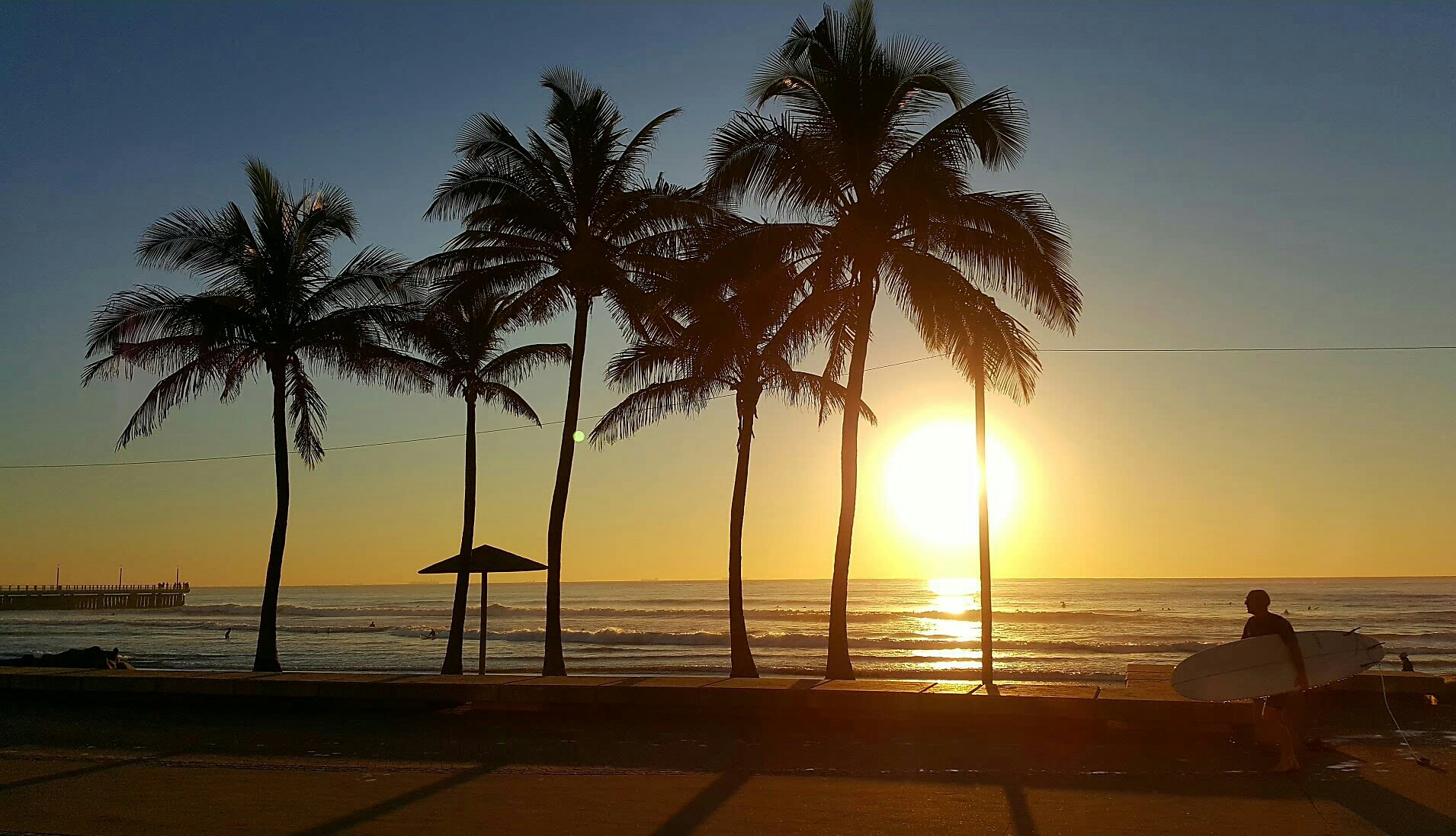 Sunrise & Palm Trees by Kasthurie Govender