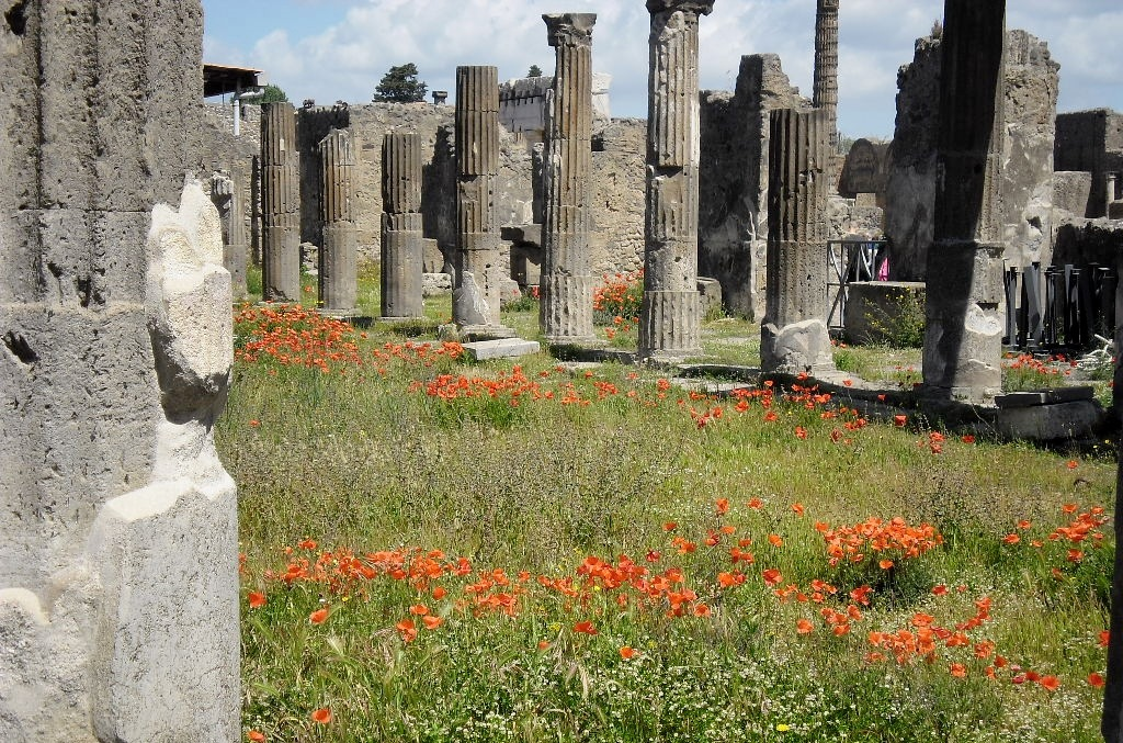 colonne by stefano armellin