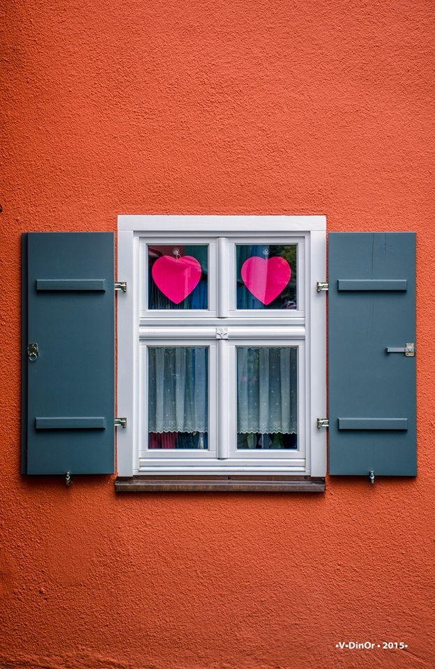 Window by Victor Dinor