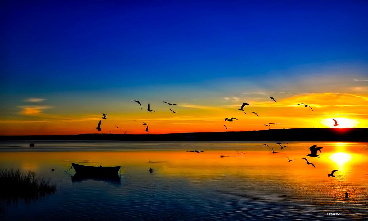 SUNSET by sskoksal
