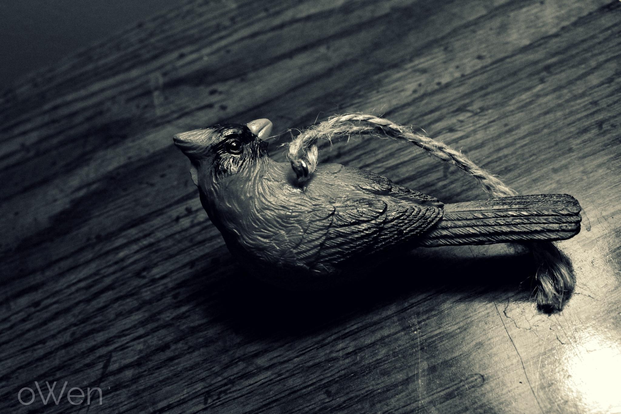 Ornament by Blane Owen