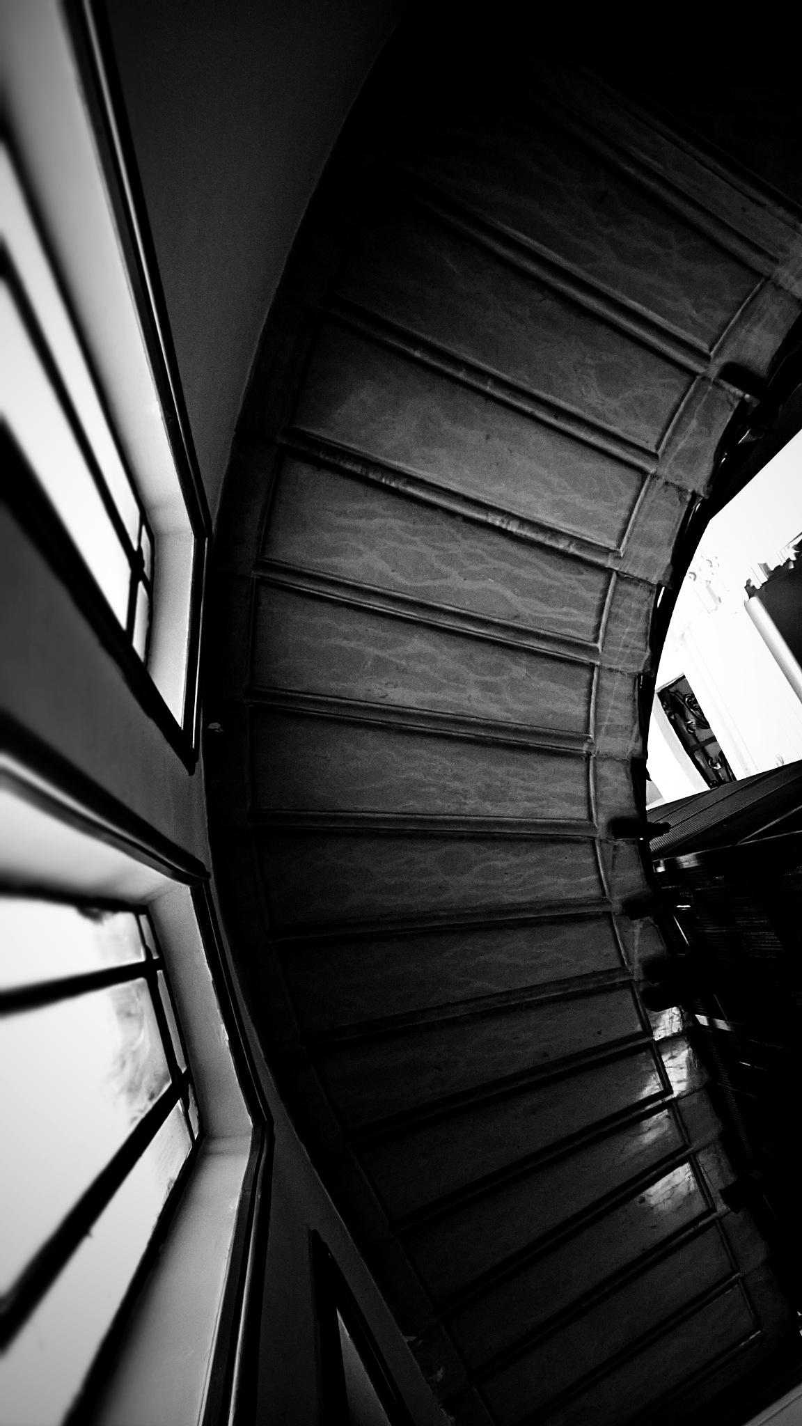 Stairway by Gabriella Bergna