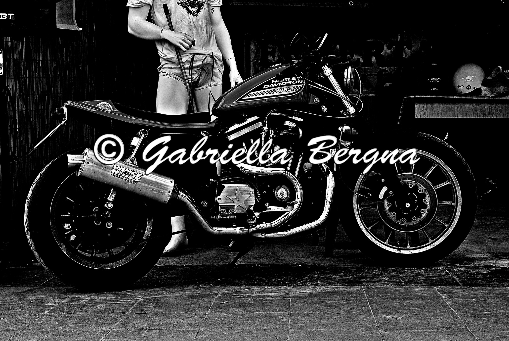 HD Sportster Racing by Gabriella Bergna
