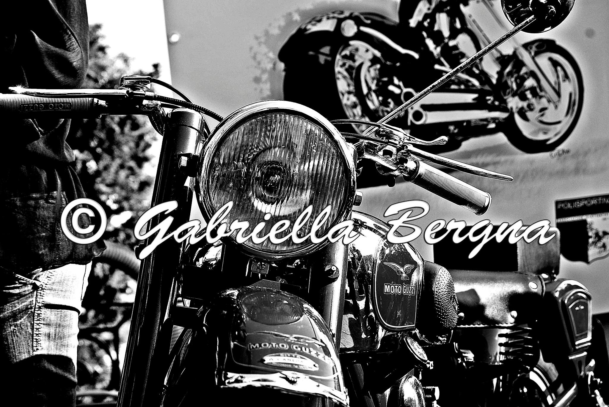 Moto Guzzi by Gabriella Bergna