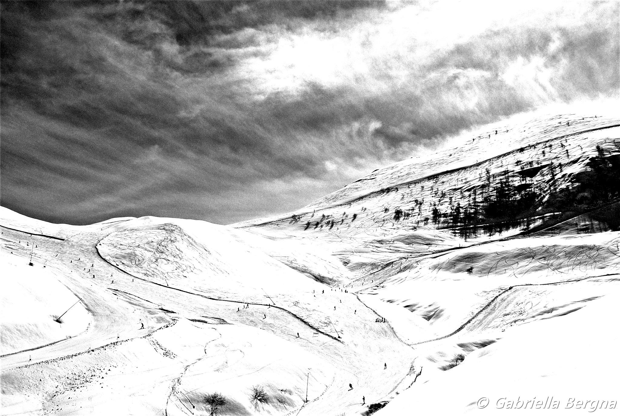 Snow by Gabriella Bergna