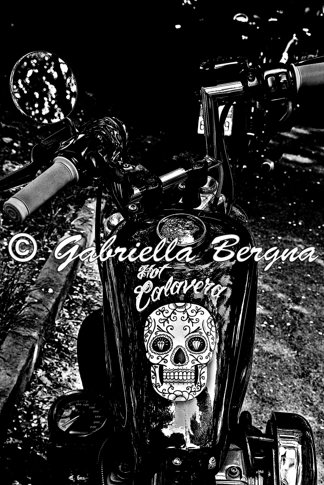 HD Custom by Gabriella Bergna