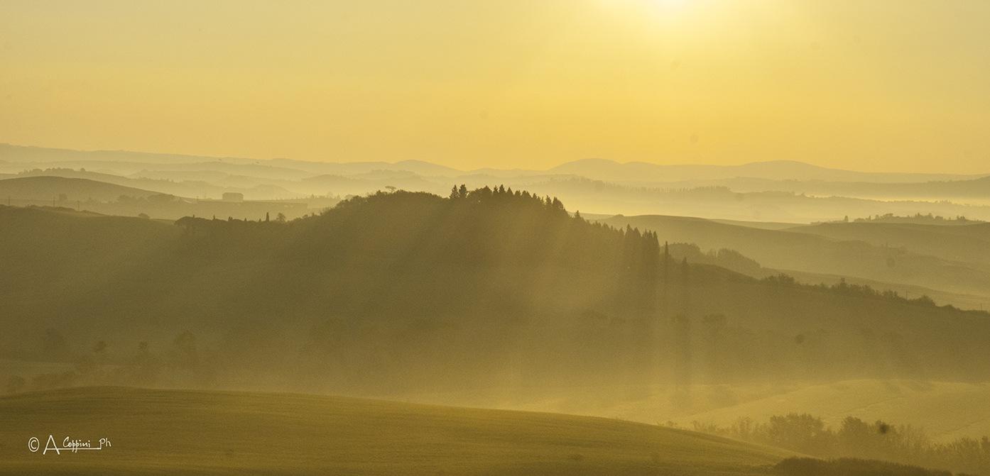 LANDSCAPE TOWELS IN ALBA 1 by Alessandro Coppini