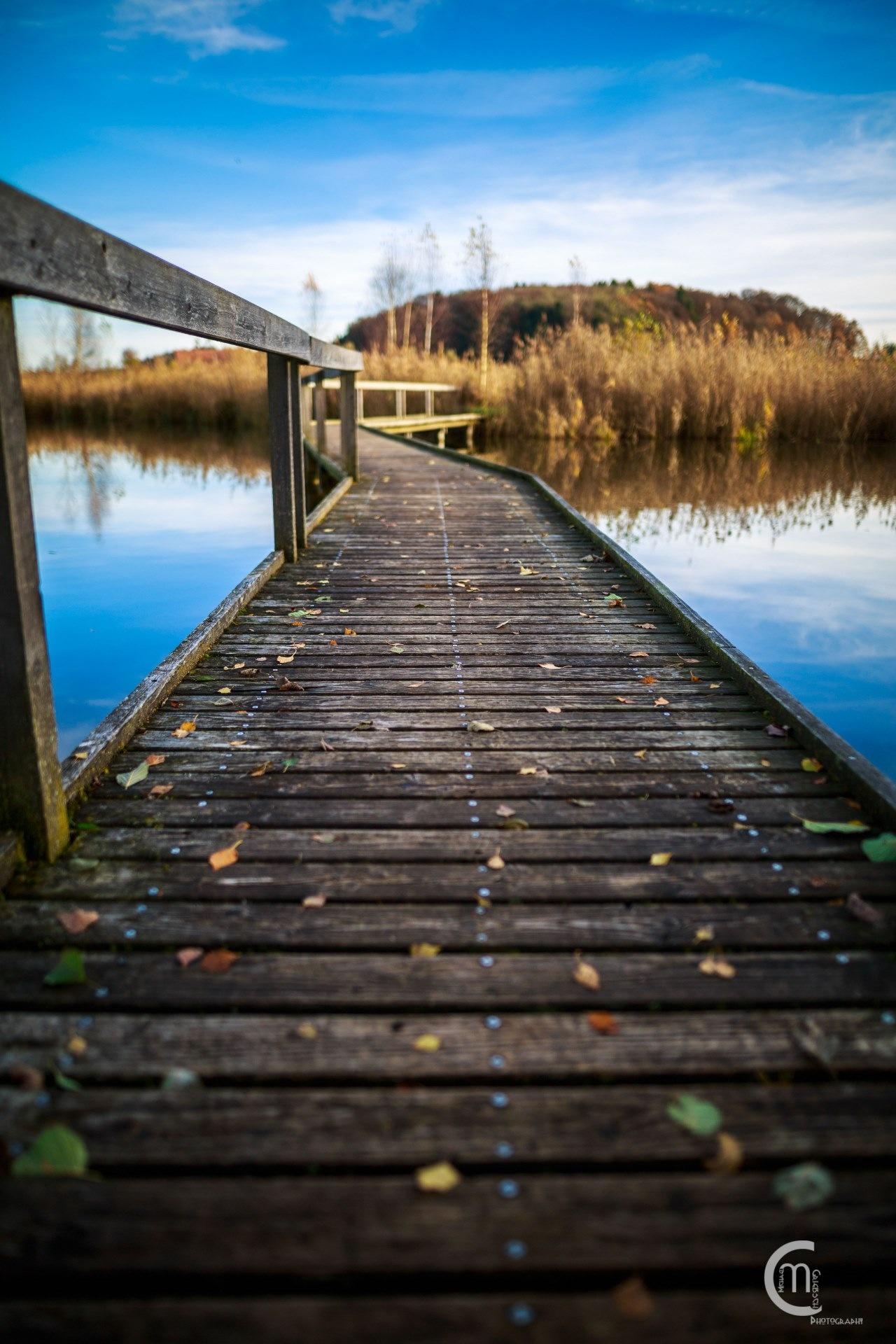 Footbridge by Michael Griebsch