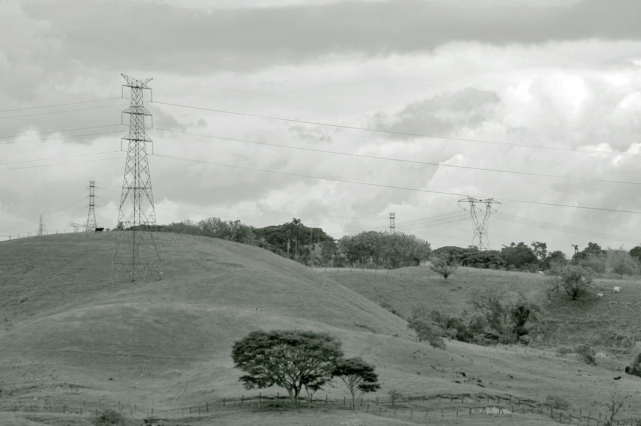 electric lines by Carlos Giovanni Rodriguez Chiluiza