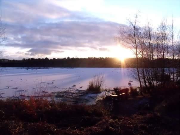 frozen lake  by Stacey Jones