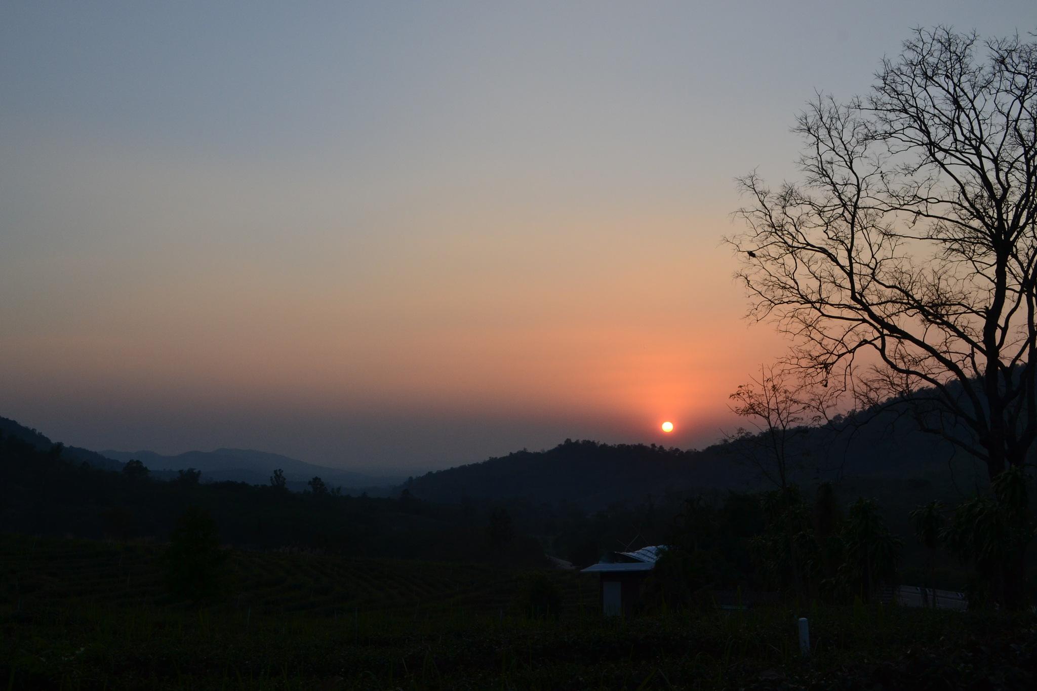 My evening*^* by Kanittha Sritipeng