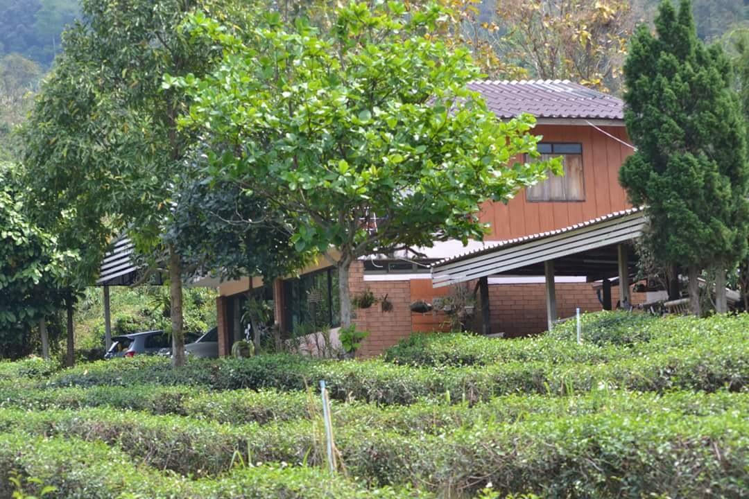 Home*^* by Kanittha Sritipeng