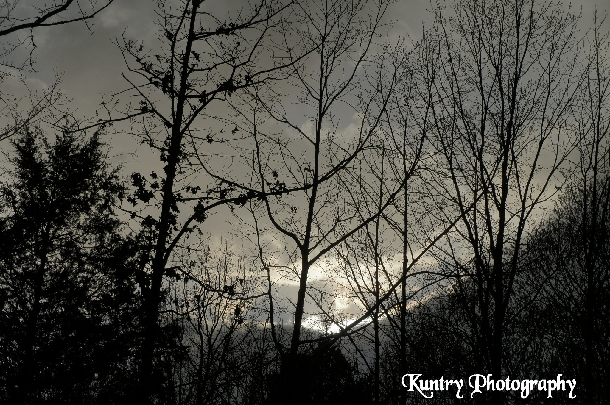 Untitled by Kuntry Photography