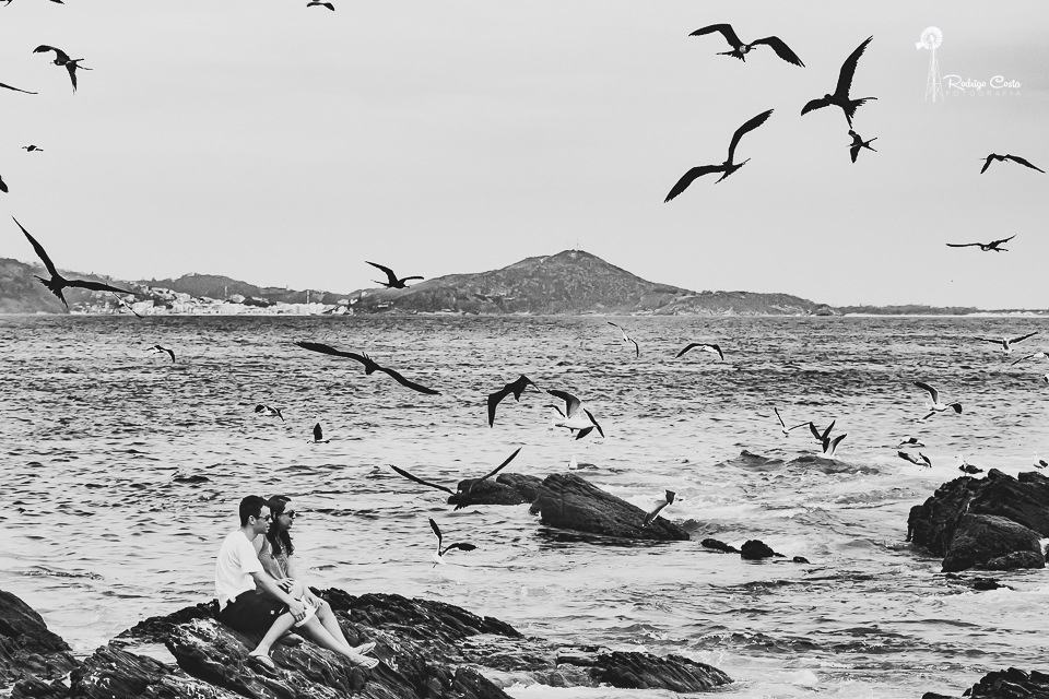 Birds and sea by Rodrigo Costa Photografia