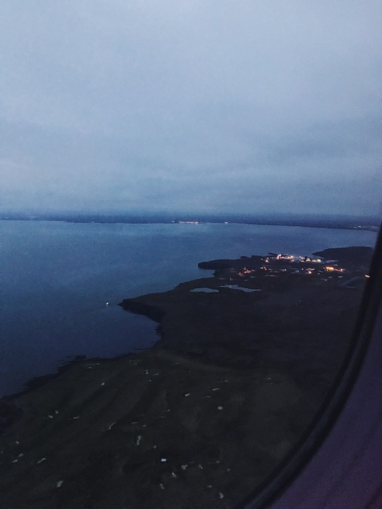 Landing in Iceland  by Angela