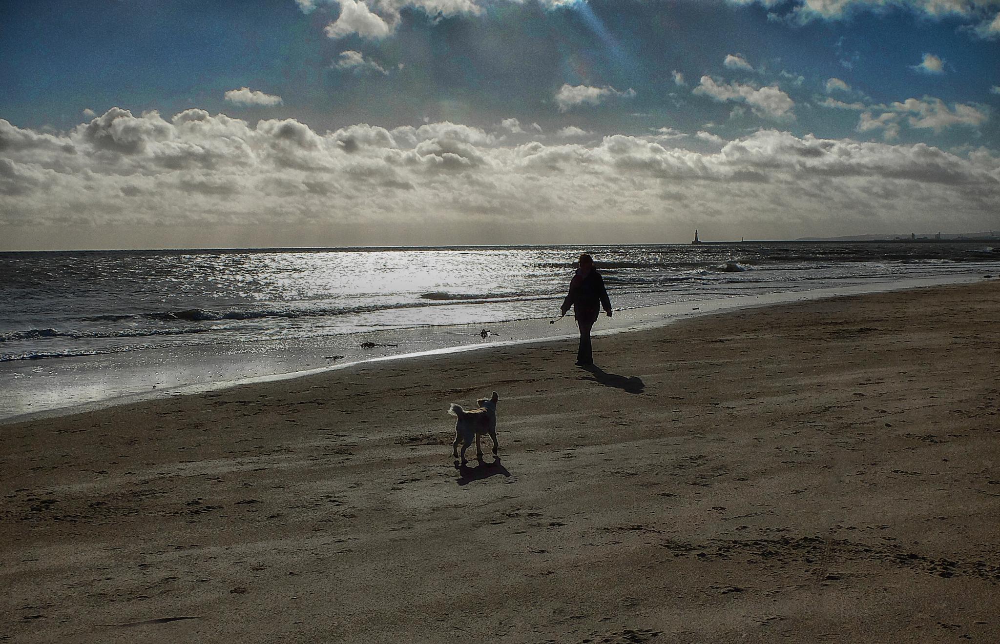 Seaburn Beach by Nigel S Jones