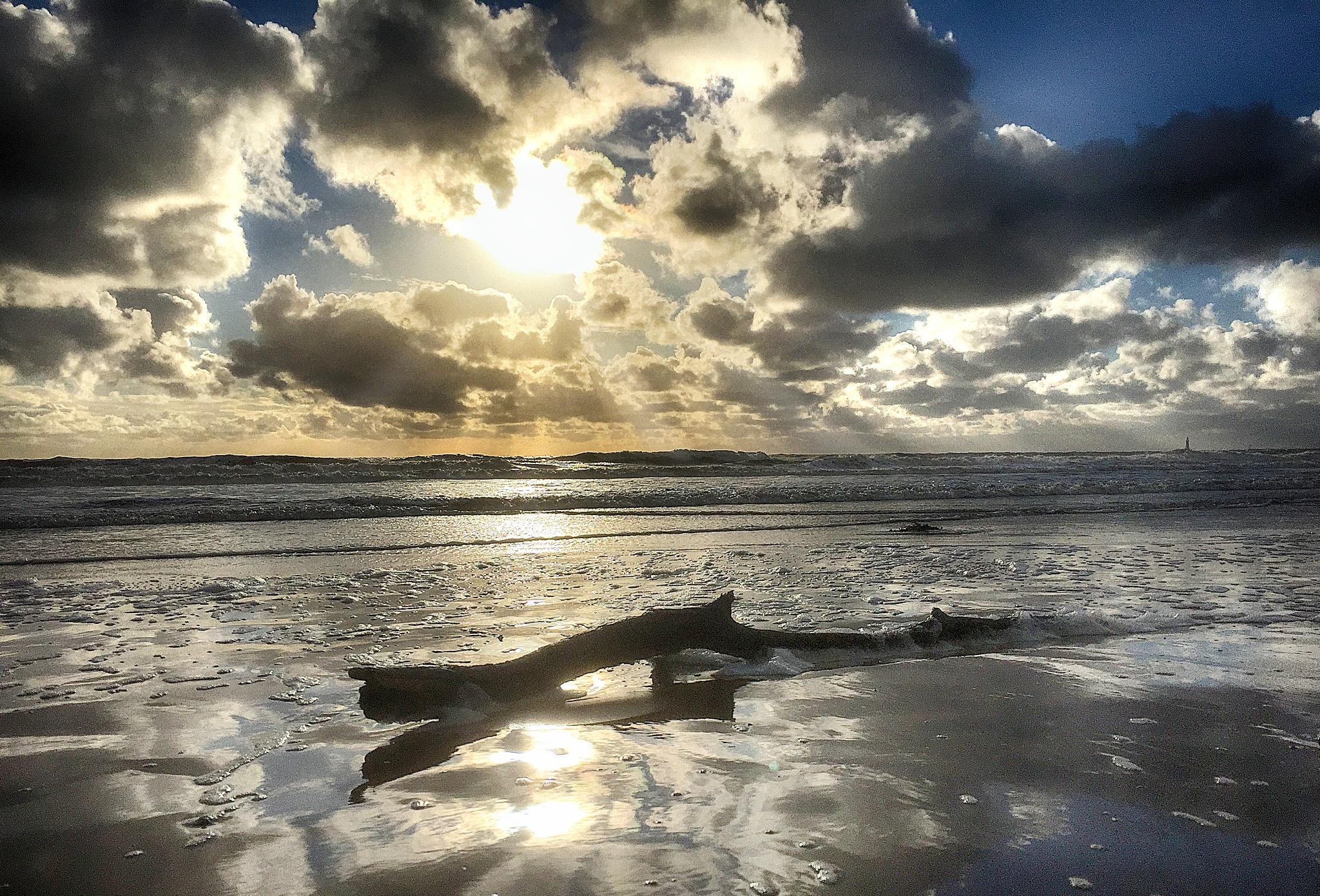 Wet and windy by Nigel S Jones