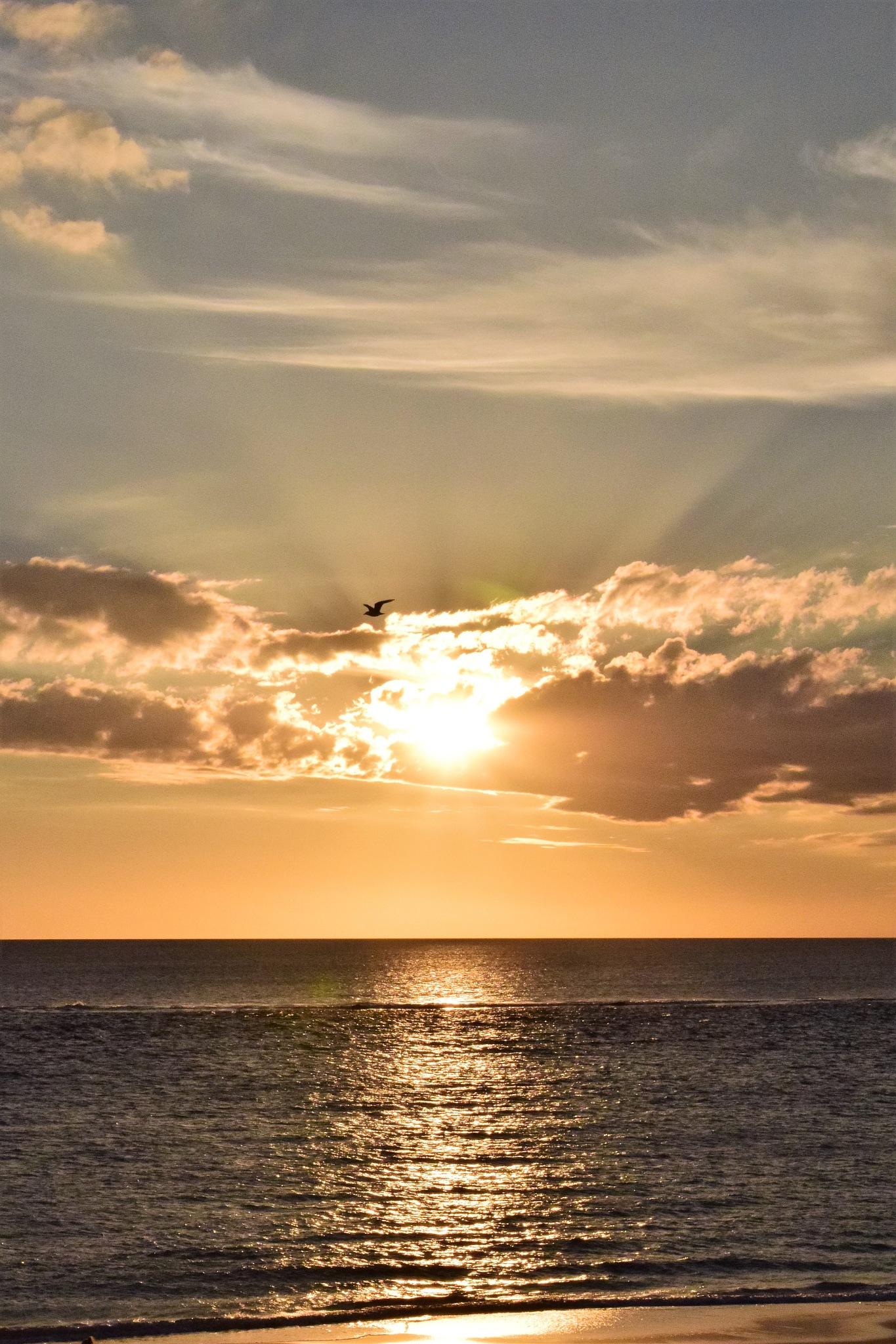 sunset rays of light by TammyTabart