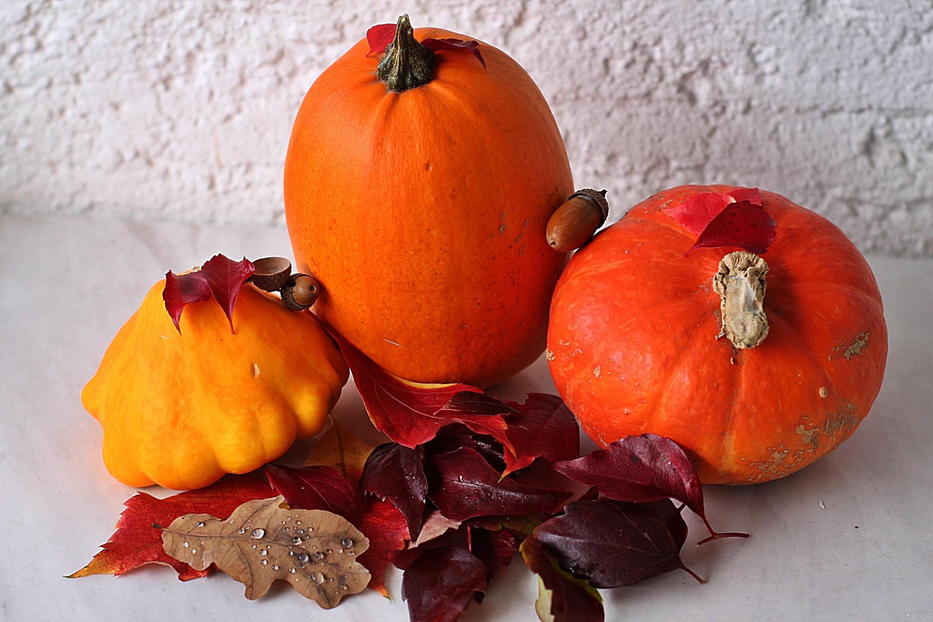 Autumn colors by pisleagaiuliana