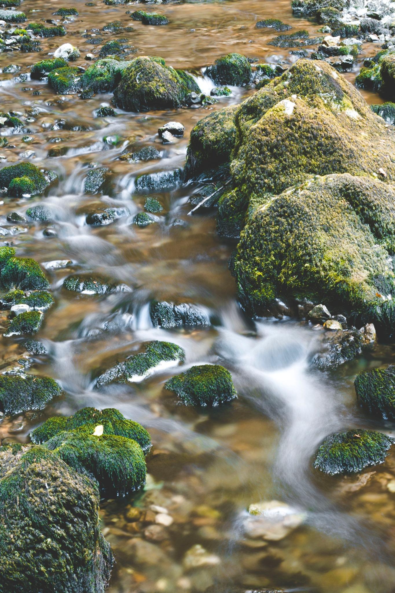 Stream of life by Karin Kebe