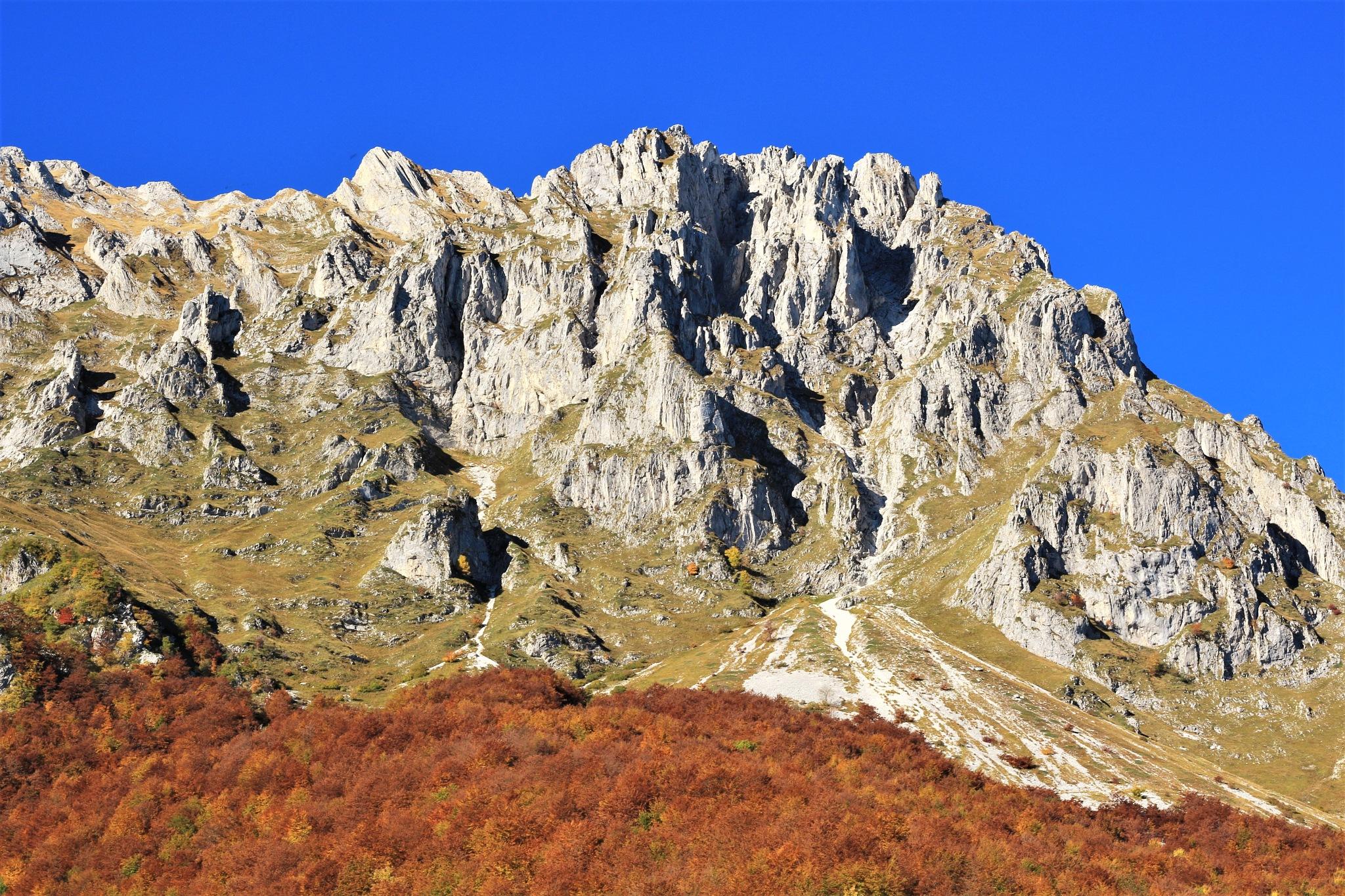 icolori dell'autunno. by mauronepa