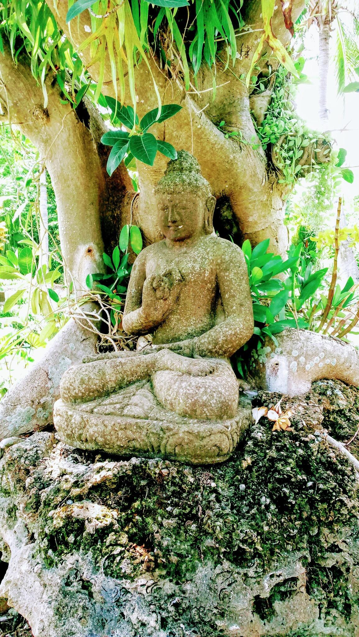 Garden Buddha by Keith Mathews Photo-Art