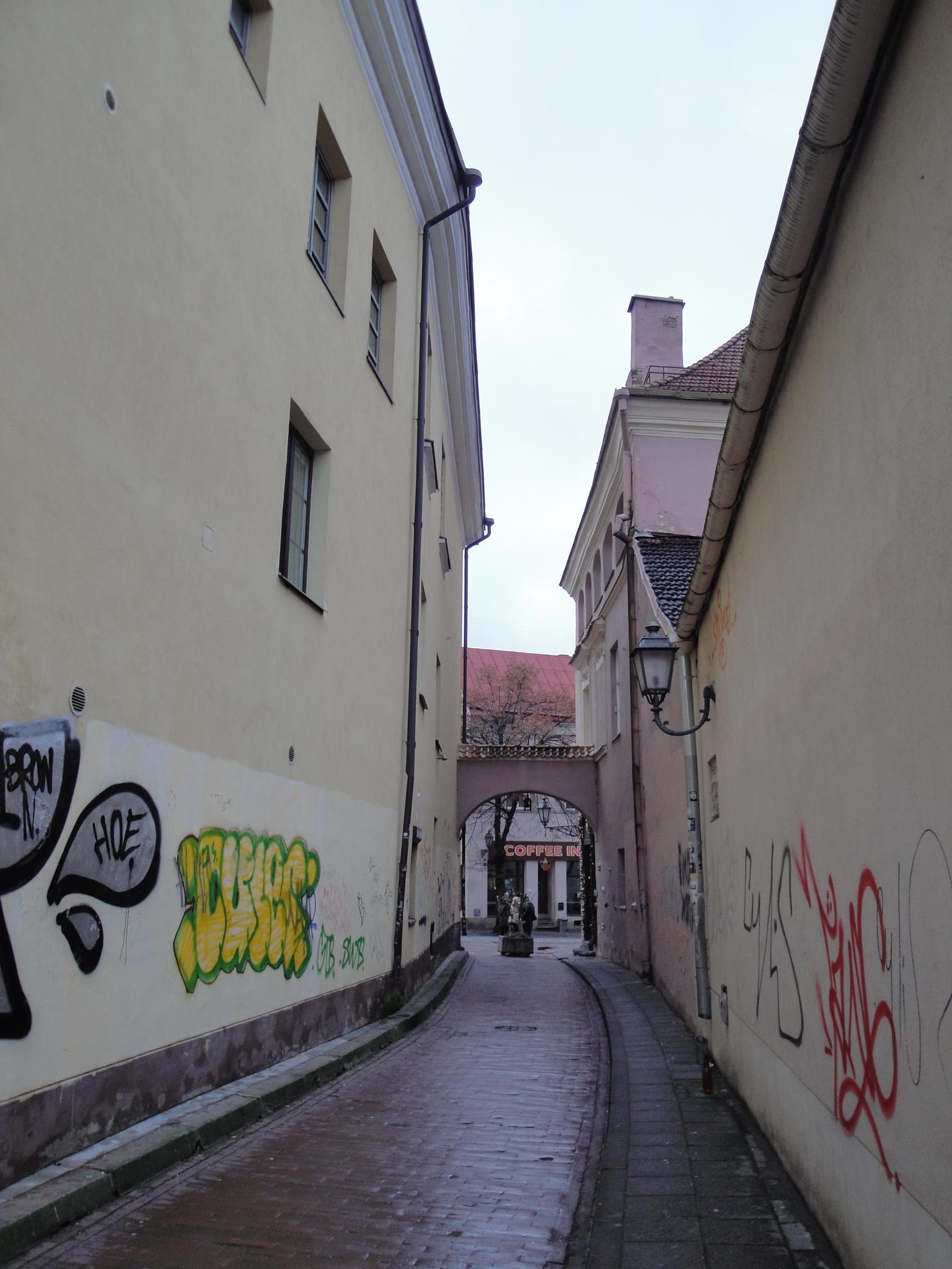 Old street in Vilnius by SigitaBer