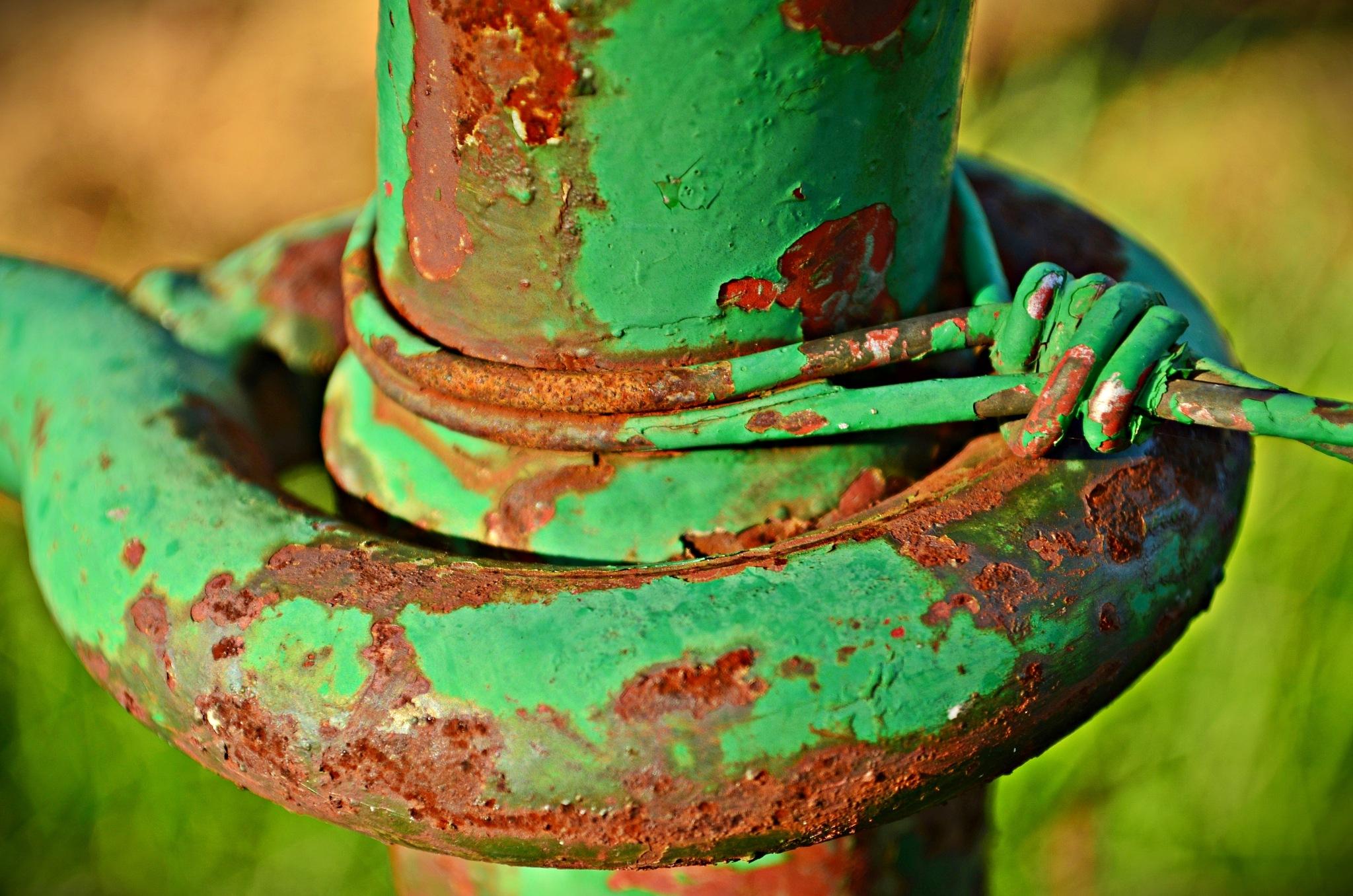 Rusty Green by debbielott