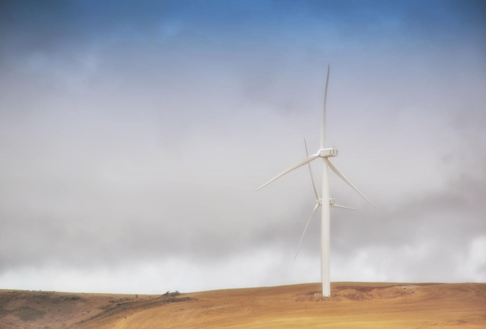 Windmills by debbielott
