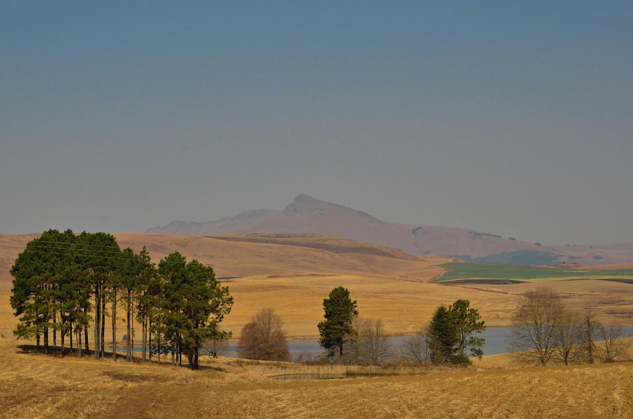 Isohalne Mountain by debbielott